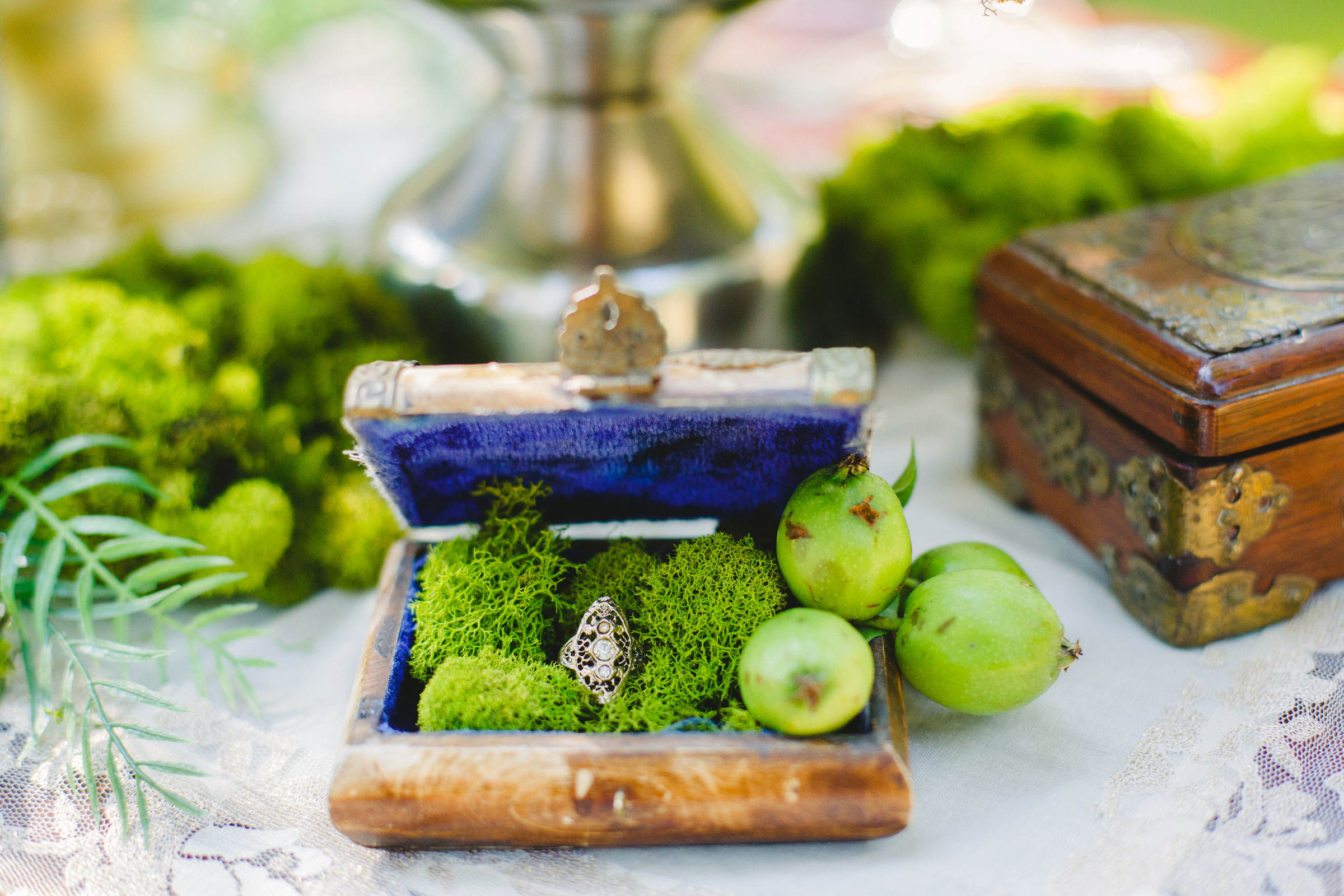 ring in antique box with limes - photo by Satya Curcio Photography