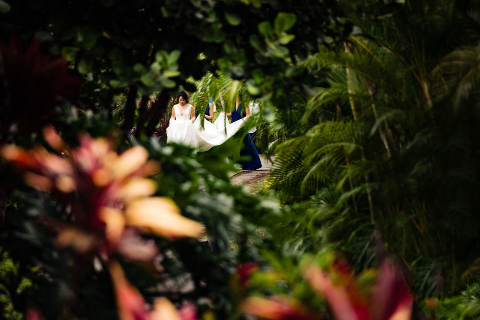 Bride seen through tropical foliage - photo by Angela Nelson Photography