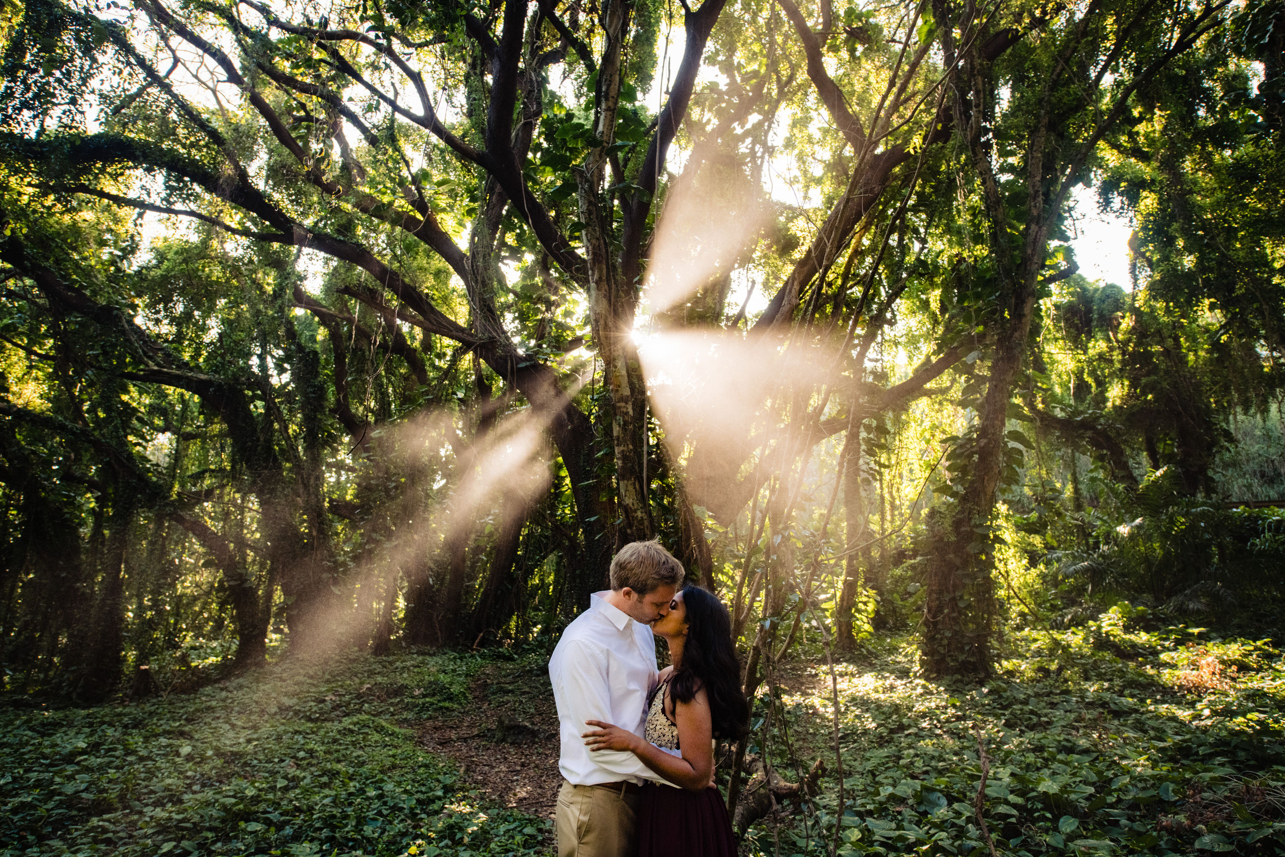 Forest kiss against sun rays - photo by Angela Nelson Photography