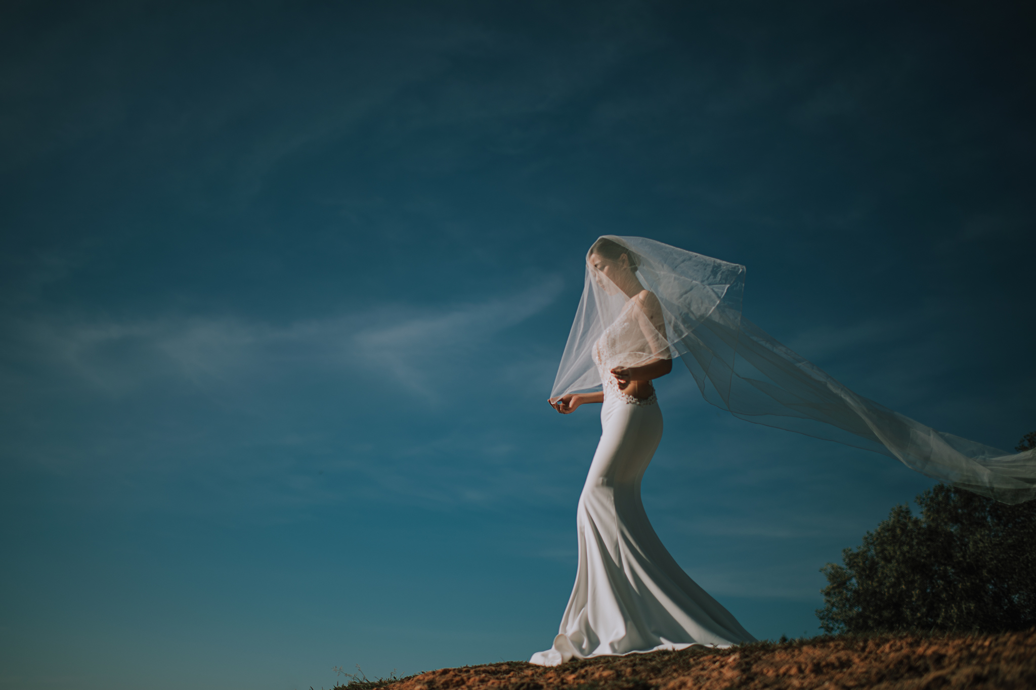 Bride wearing crepe trumpte wedding gown and veil against blue sky - photo by Edwin Tan Photography