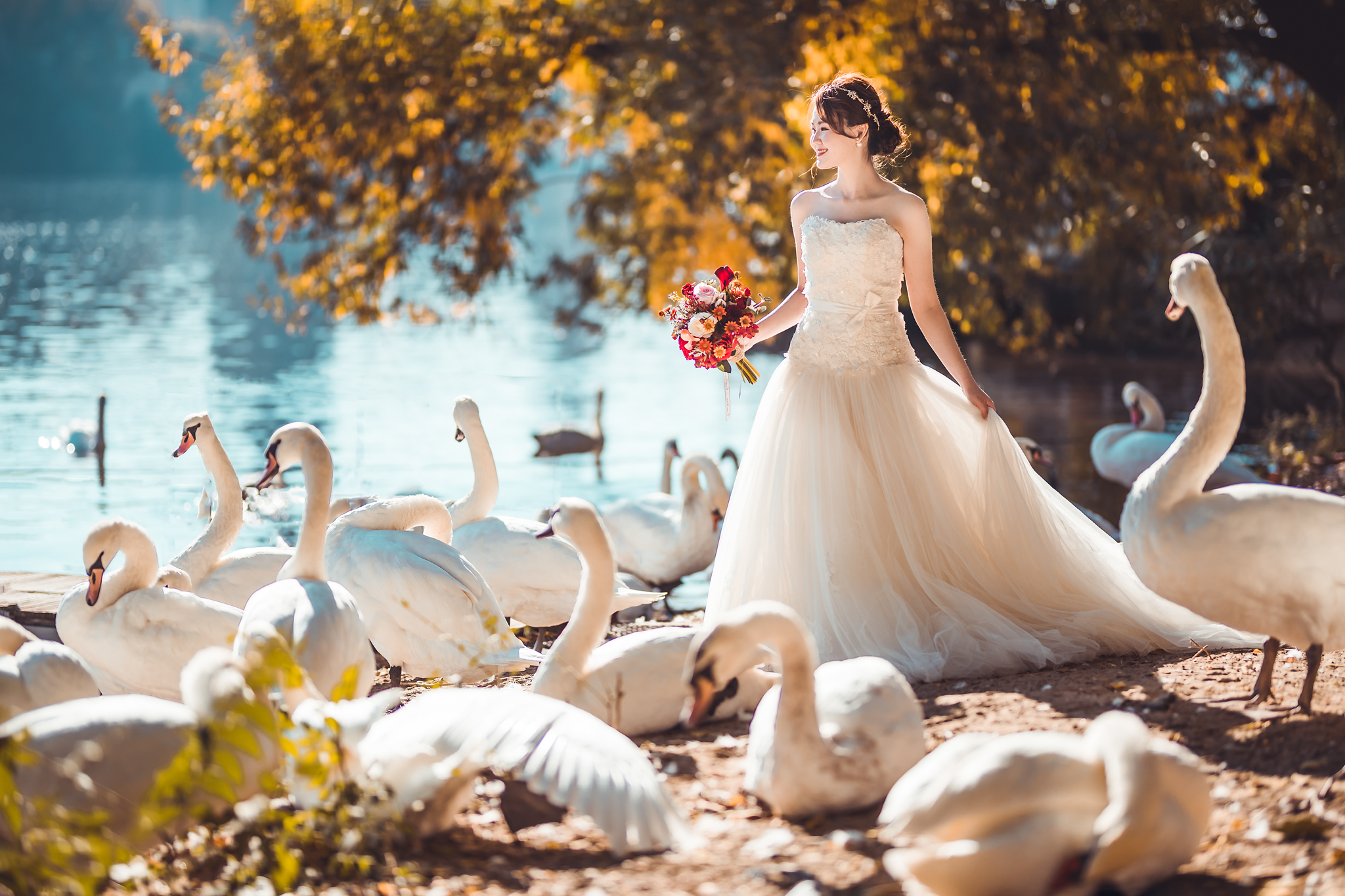 Bride with swans - photo by Edwin Tan Photography
