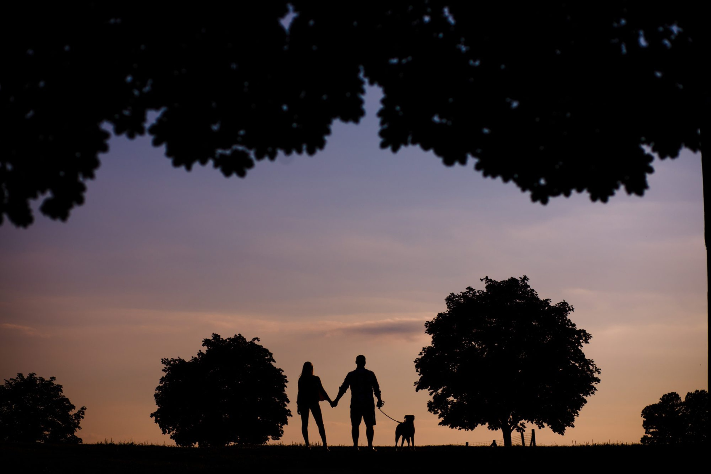 Silhoutte of couple and dog flanked by trees - photo by Photography by Brea