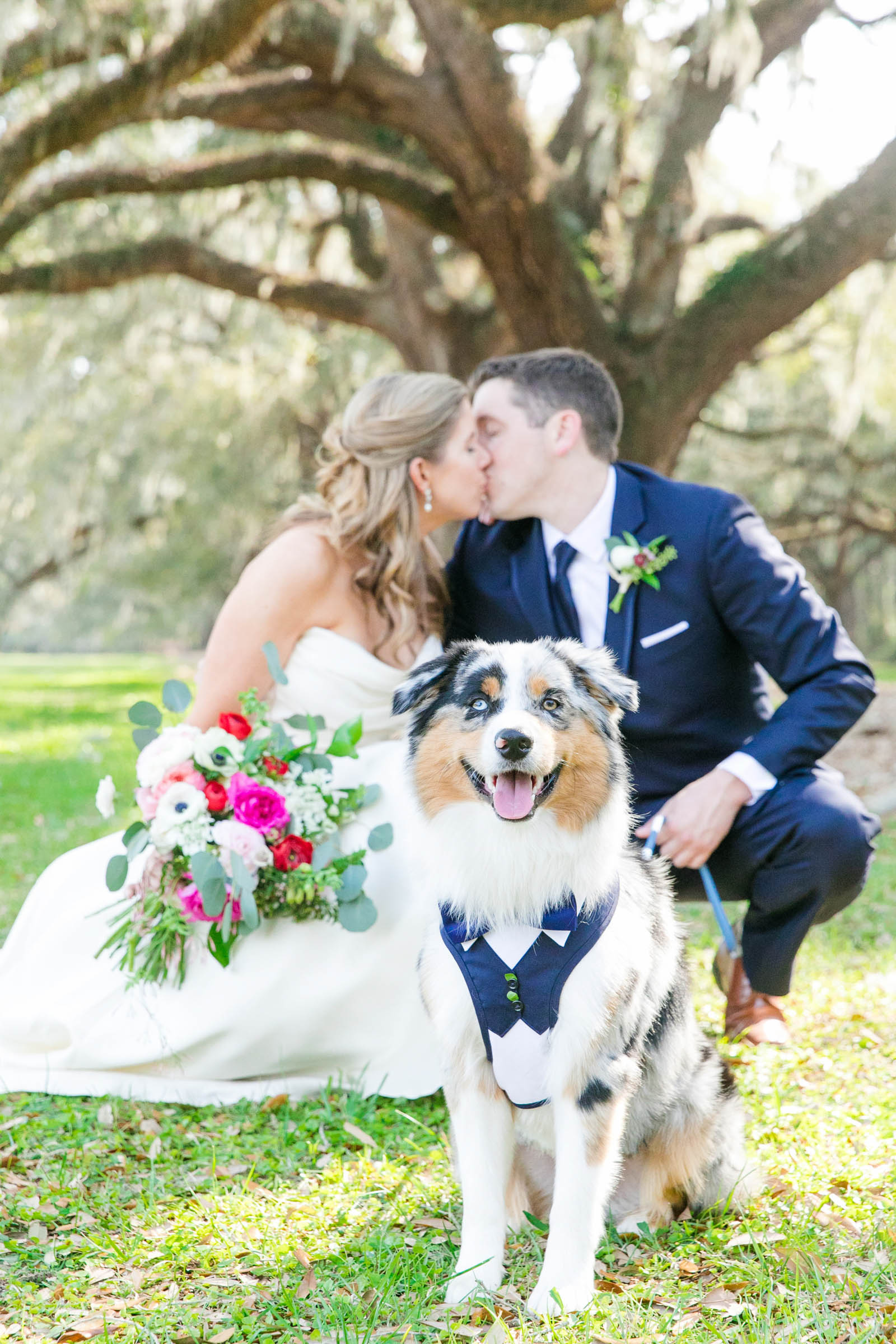 Dog in tuxedo with kissing couple - photo by Dana Cubbage Weddings