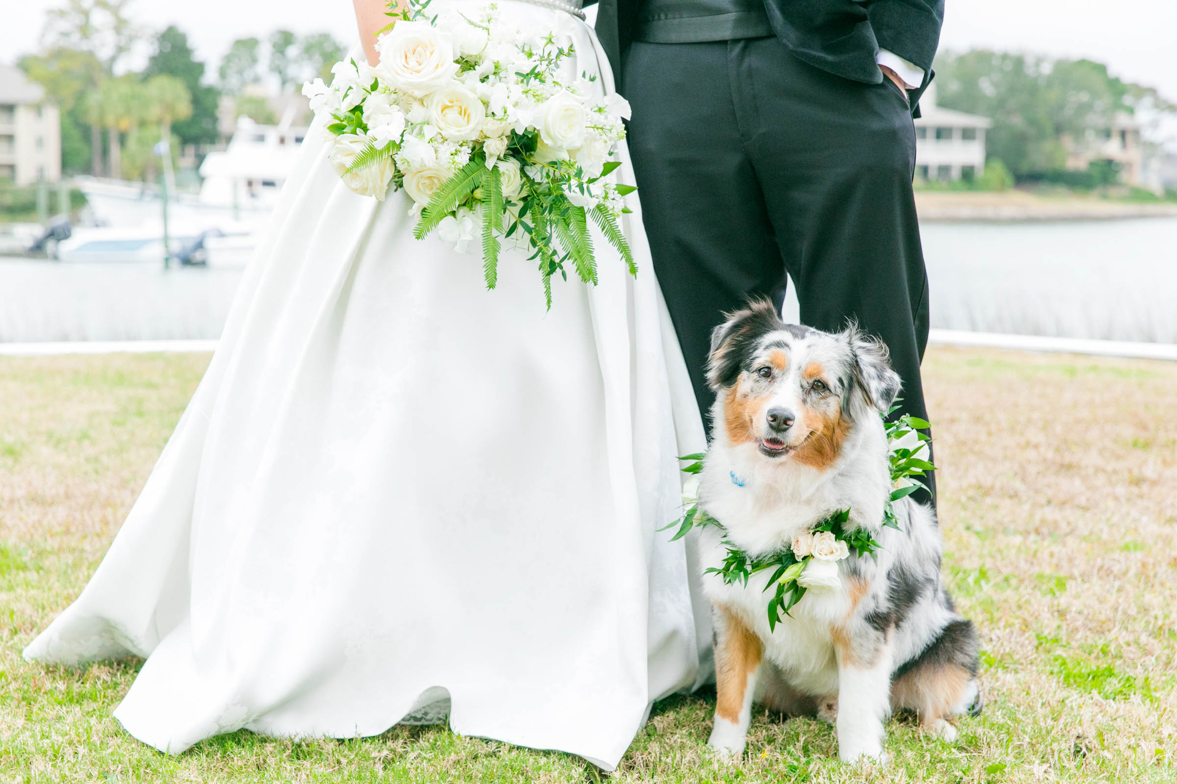 Dog portrait with couple - photo by Dana Cubbage Weddings