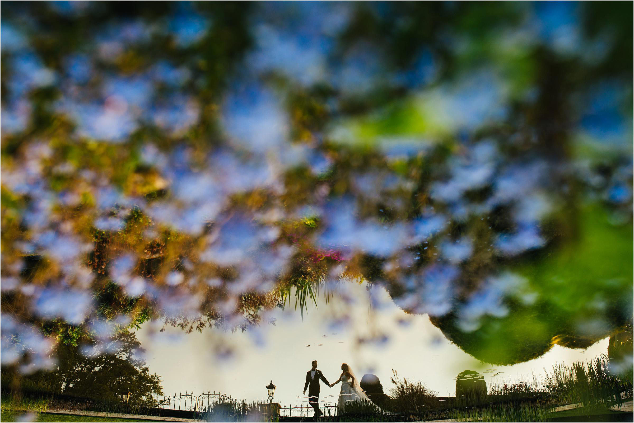 Silhouette couple seen through blueberry bush - photo by The Crawleys