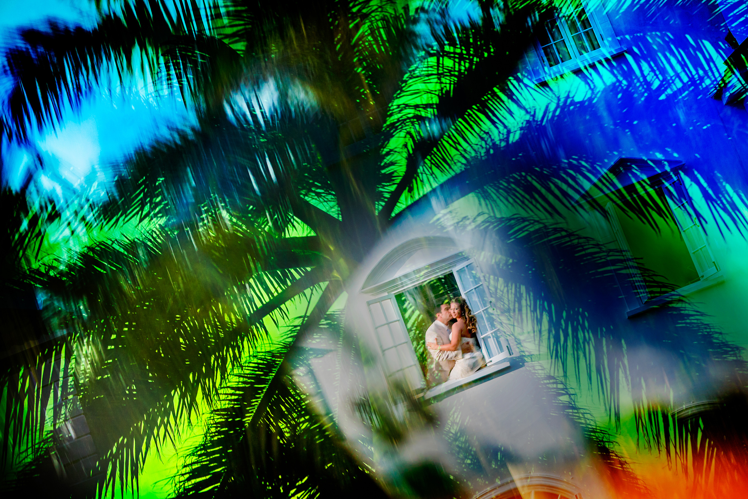 Bride and groom portrait reflection on window against palm trees  - photo by Chrisman Studios