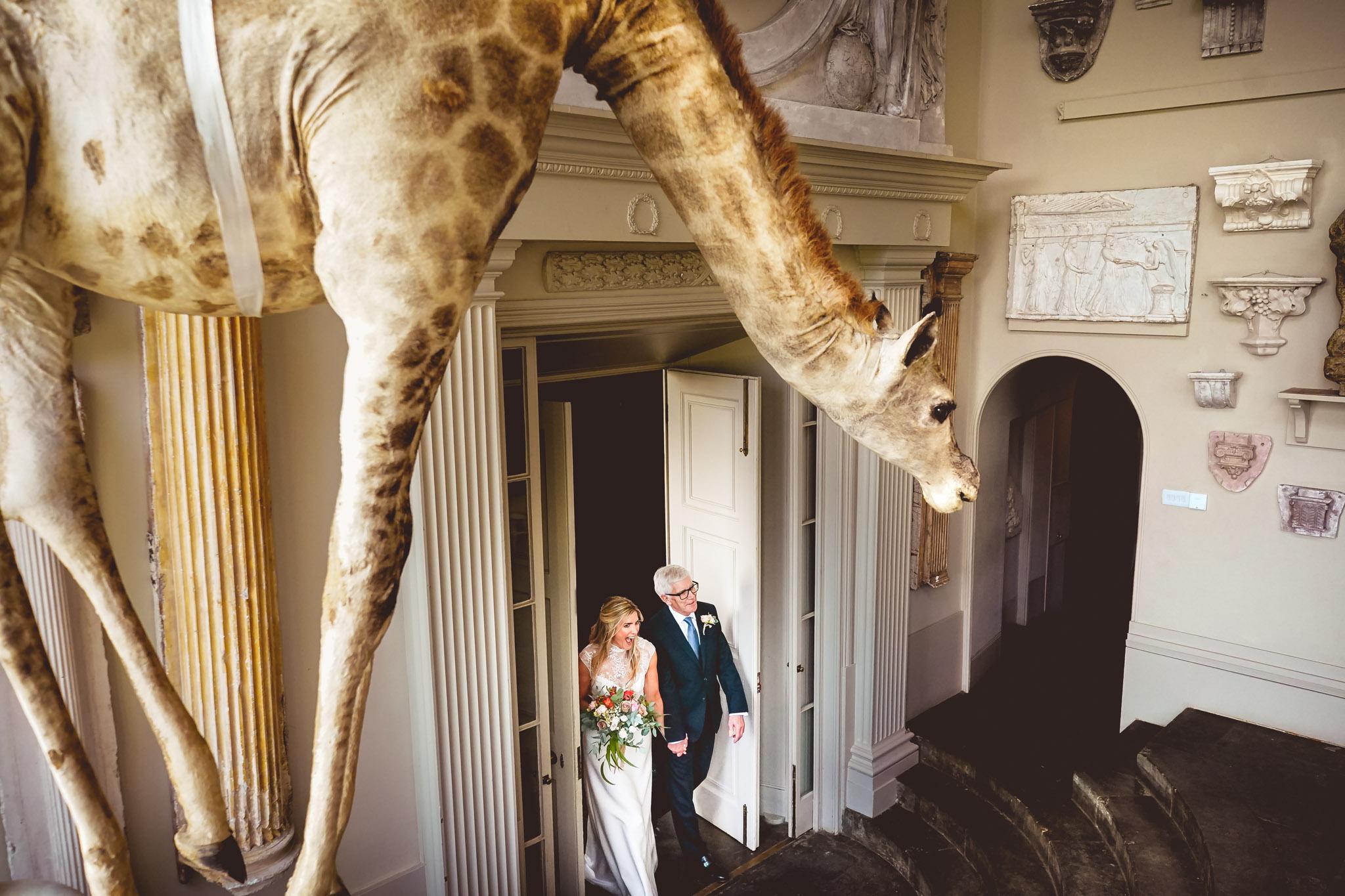 Bride and dad walk beneath stuffed giraffe - photo by Andrew Billington Photography