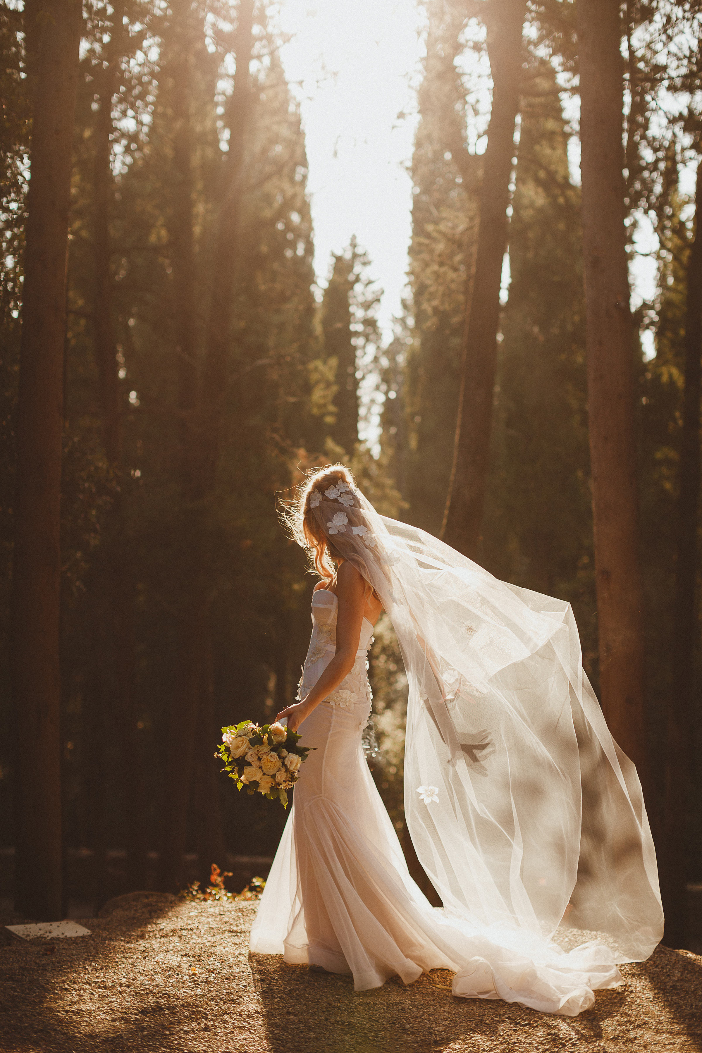 Bride with flowing veil against trees - photo by Ed Peers Photography