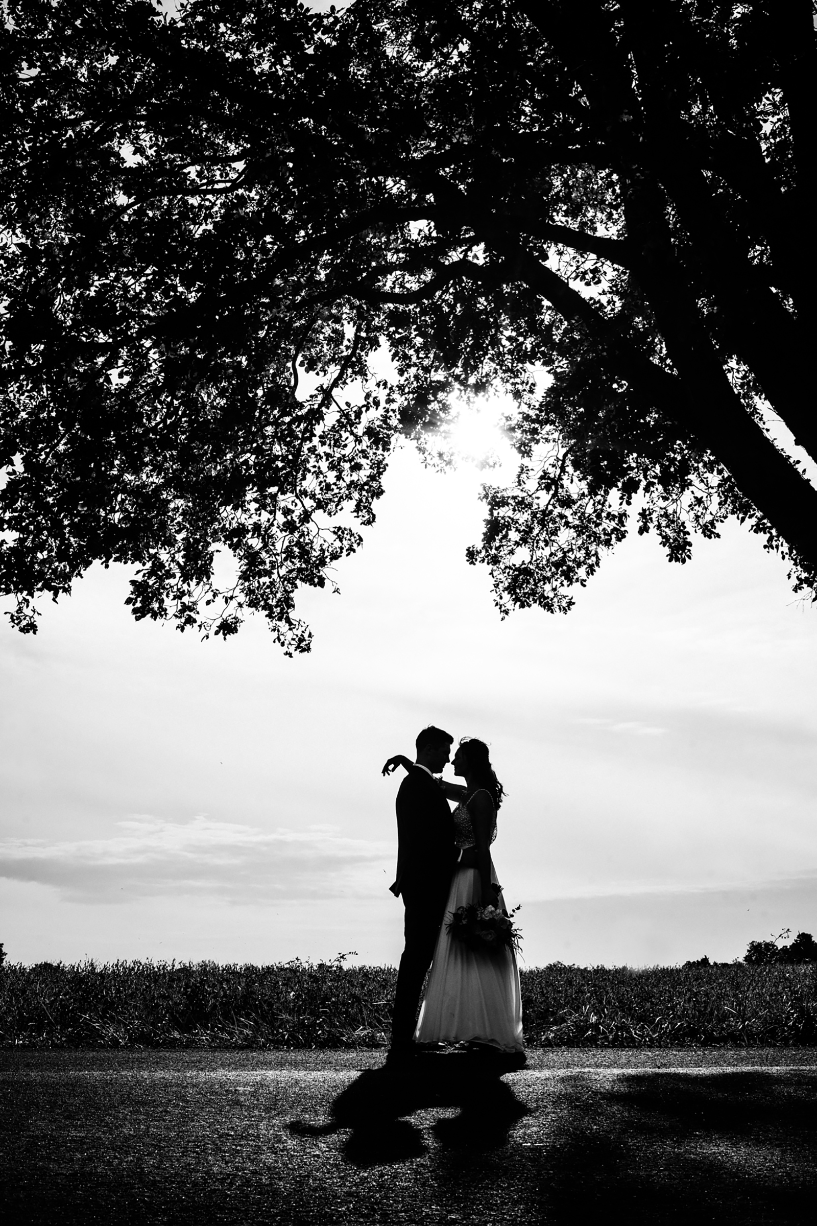 Couple silhouette under tree - photo by Kelli Wilke Photography