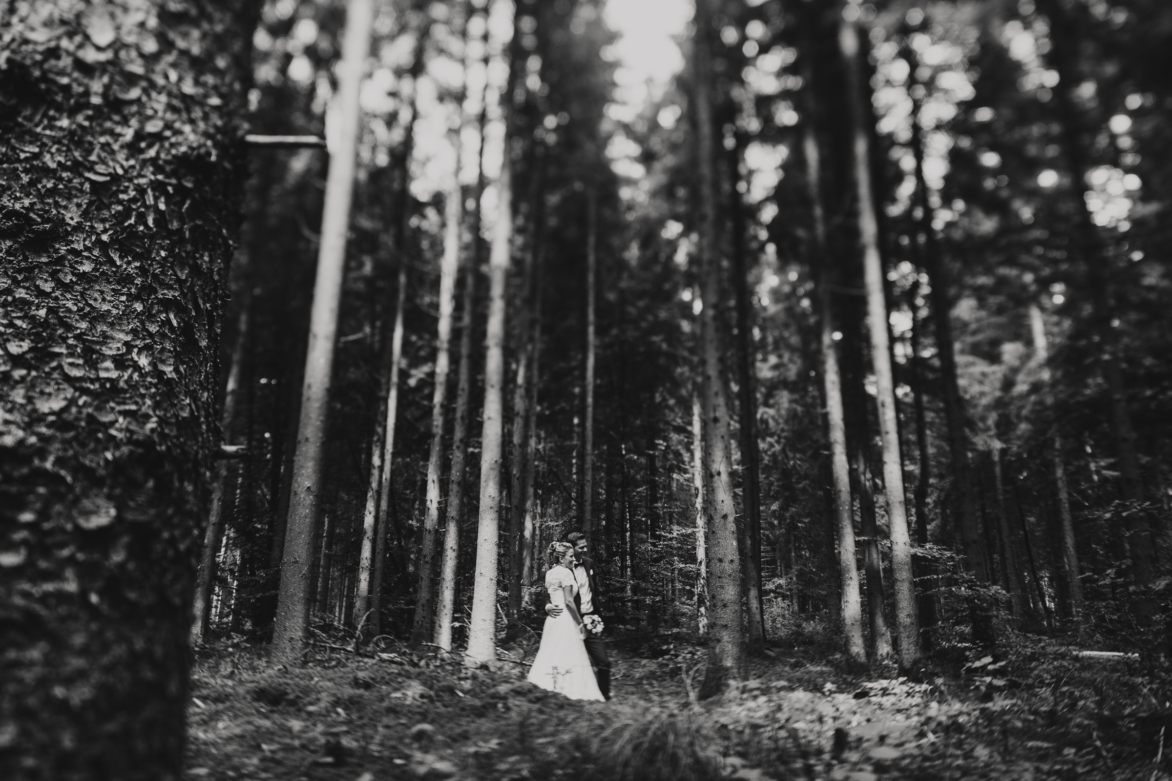 bride and groom portrait in a forest setting of tall trees- photo by FineArt Weddings | Photography