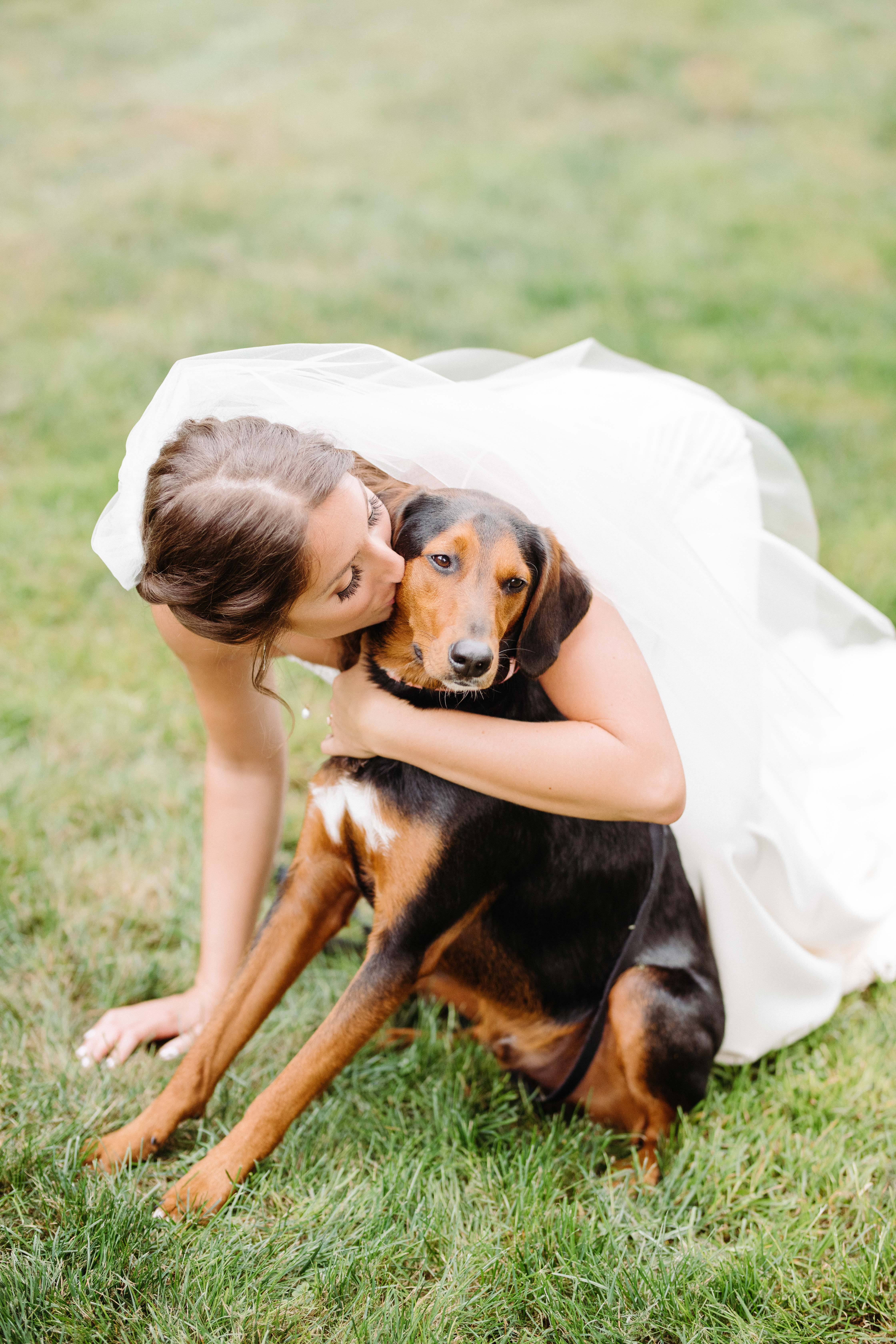 Bride kisses her puppy - photo by Cameron Zegers Photography