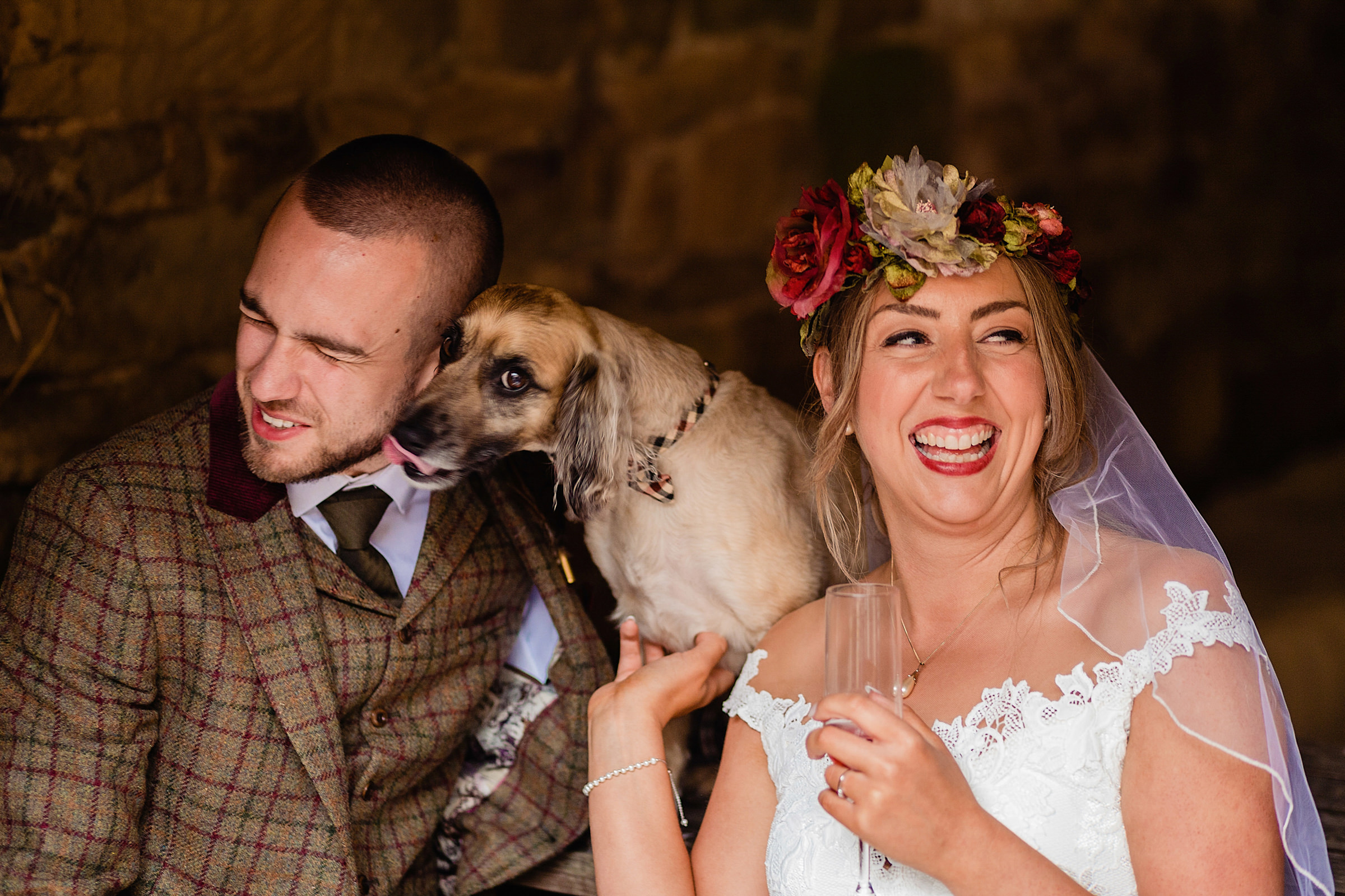 Dog kisses for happy couple - photo by Emma + Rich