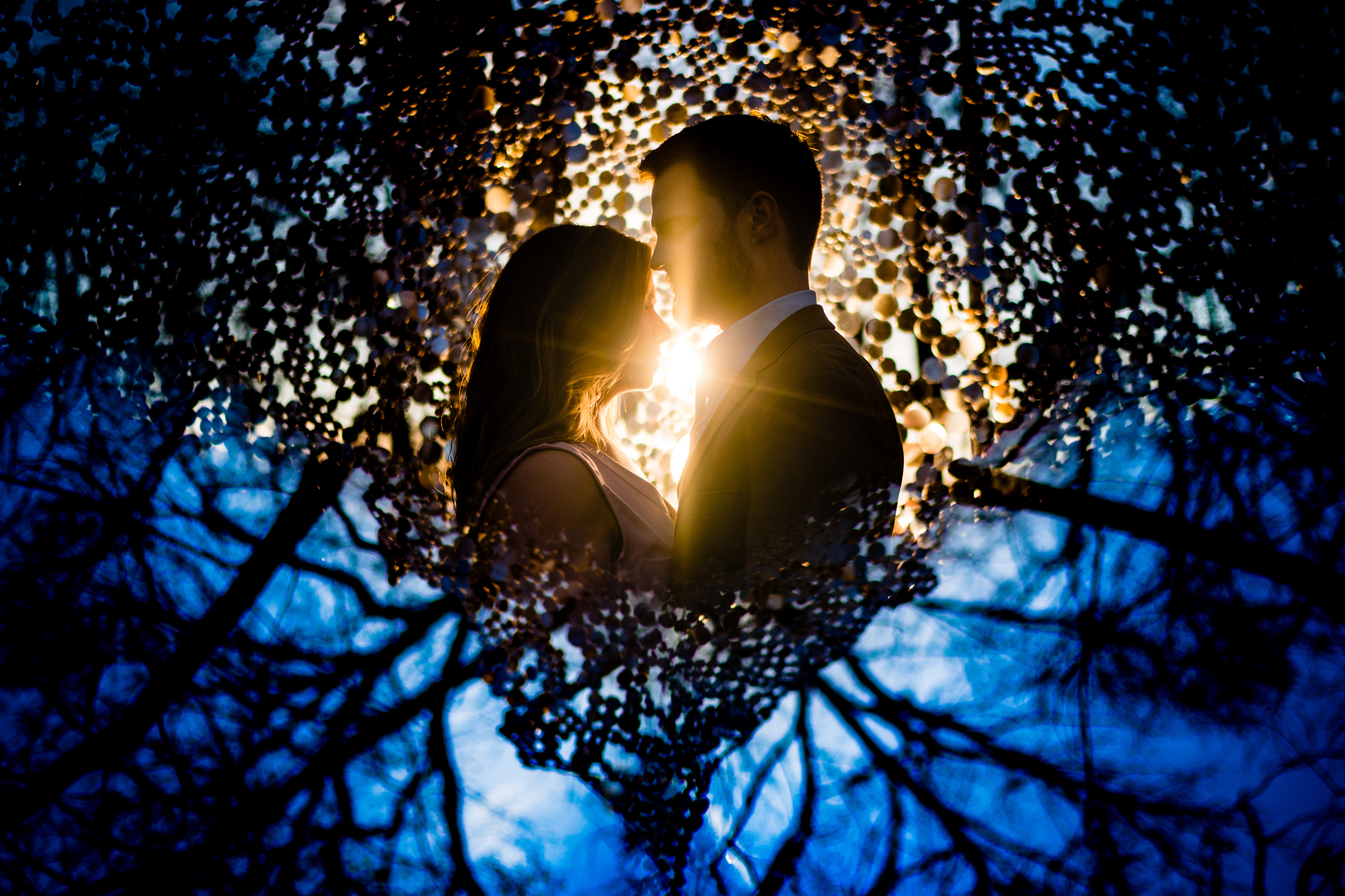 Backlit and prismed photo of couple against trees and art installation - photo by Vinson Images