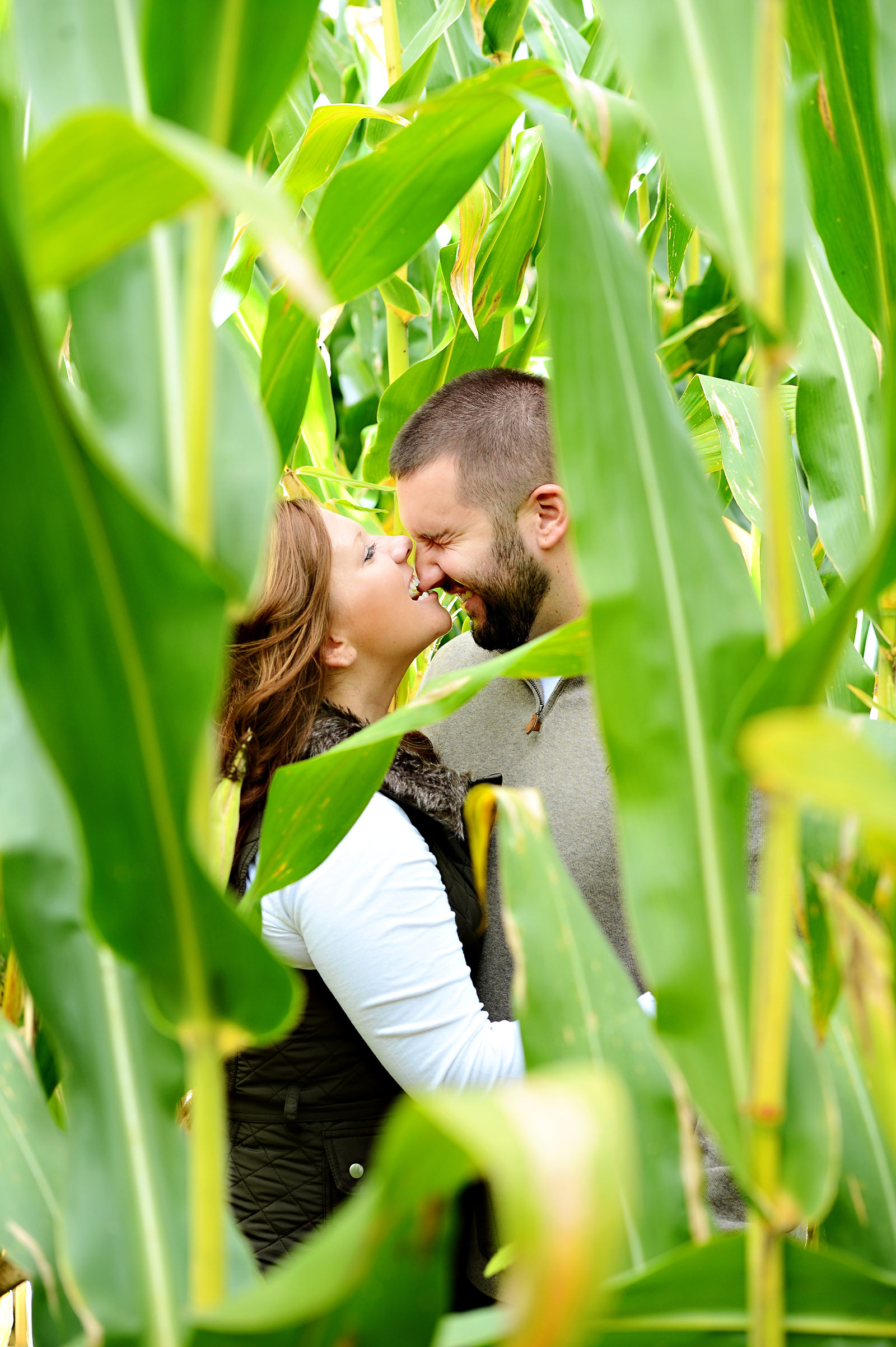 Couple playing around in cornfield - photo by Jeff Tisman Photography