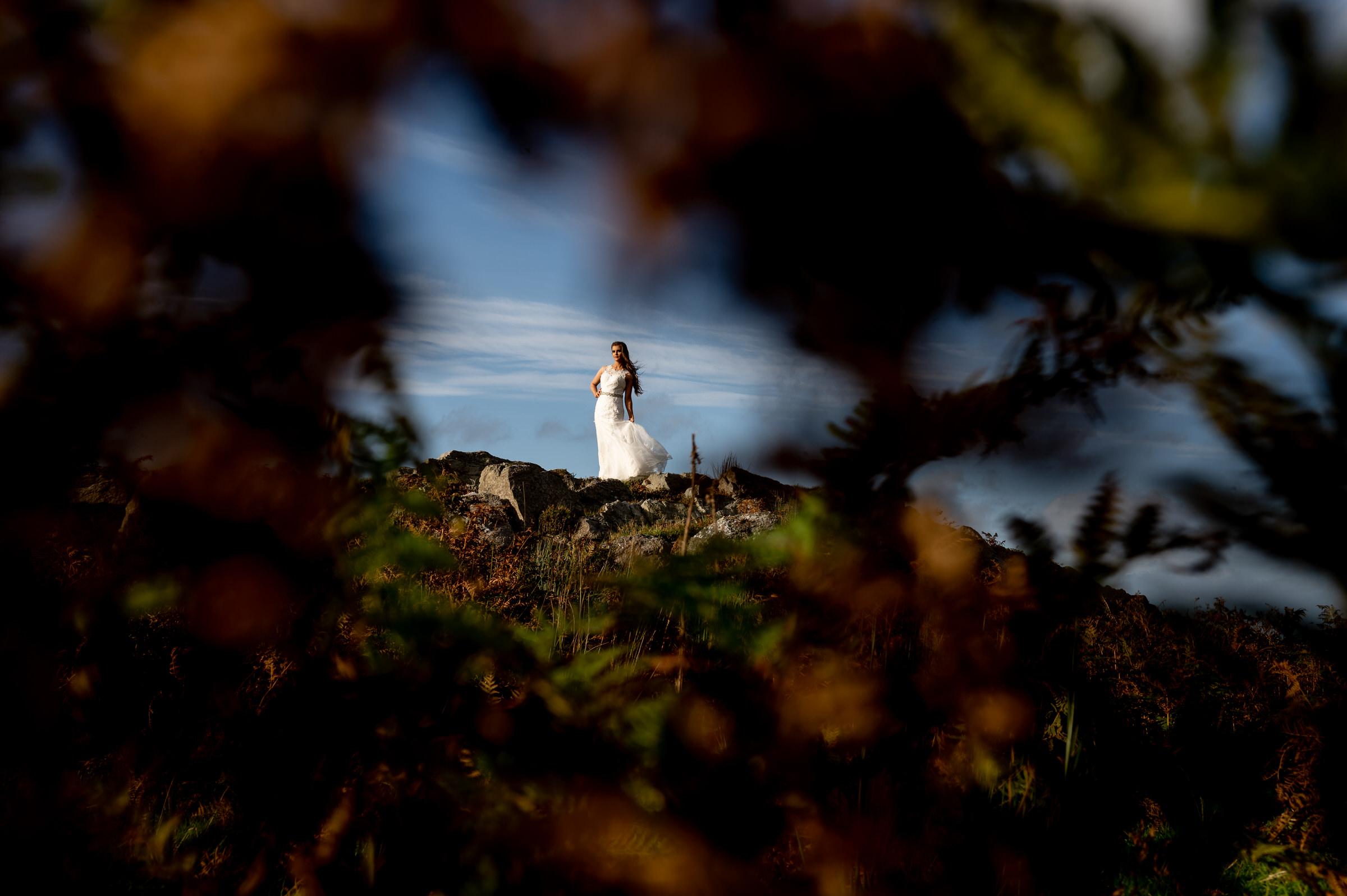 Bride seen through foliage - photo by John Gillooley