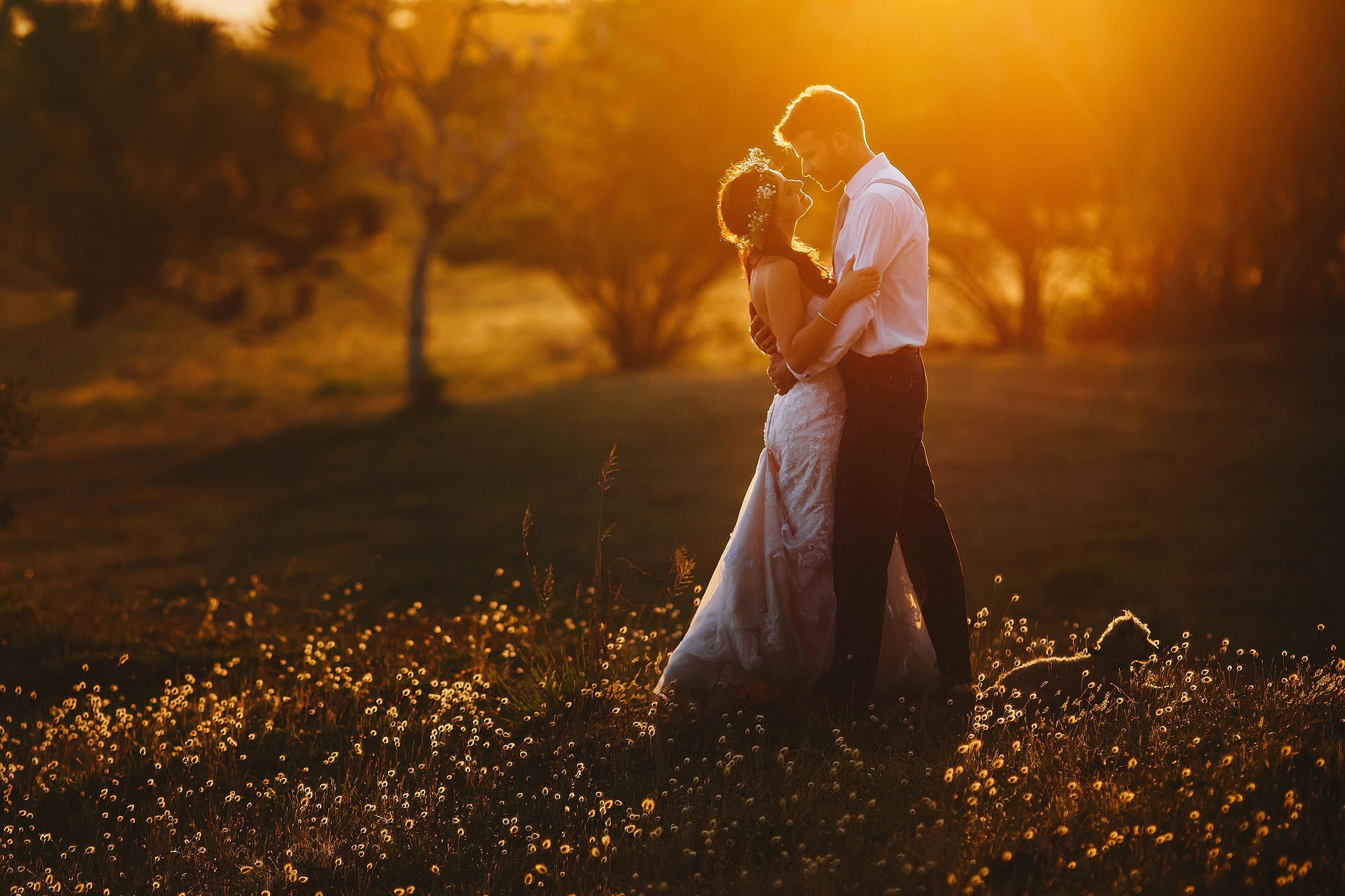 Backlit sunset couple with small dog - photo by Ruan Redelinghuys Photography