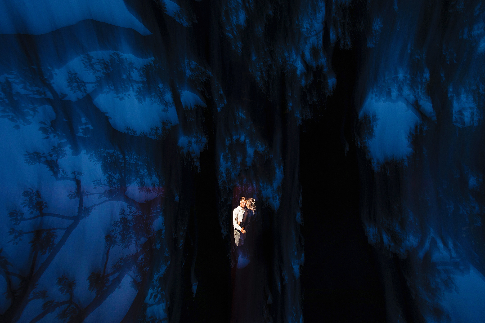 Couple against dark blue sky and silhouette trees- photo by Ruan Redelinghuys Photography