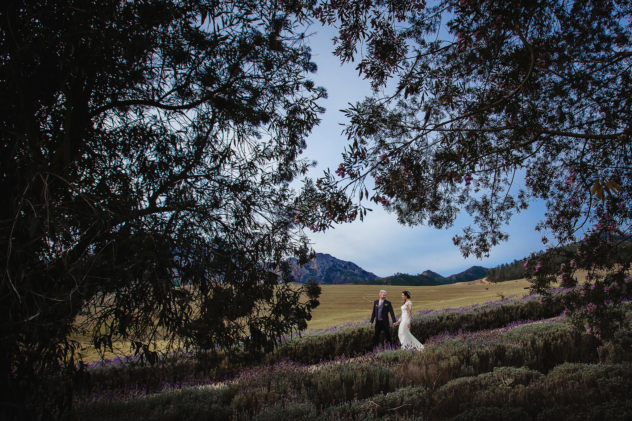 Couple on path through fields against trees and mountains - photo by Ruan Redelinghuys Photography