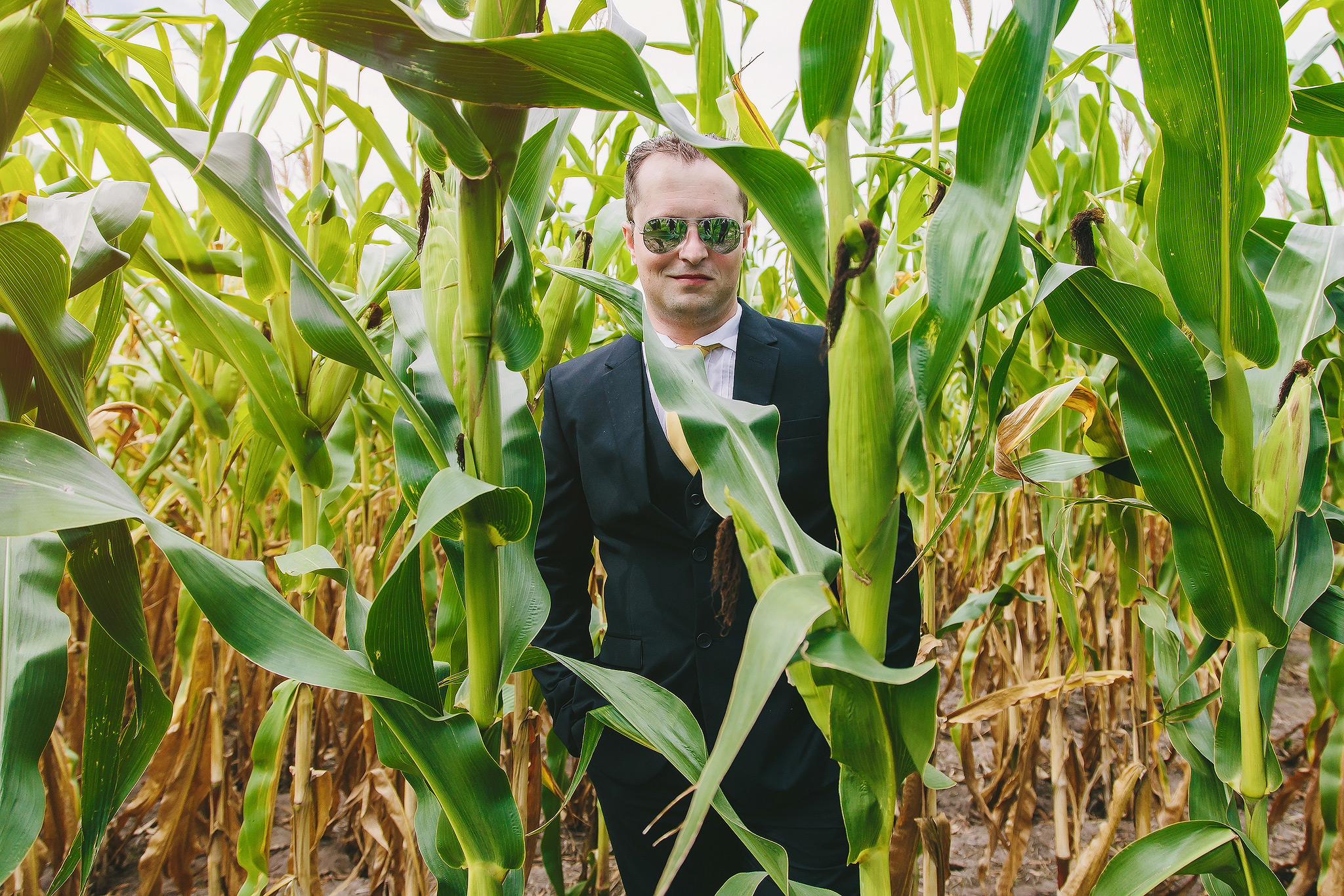 Groom in a cornfield - photo by Ruan Redelinghuys Photography
