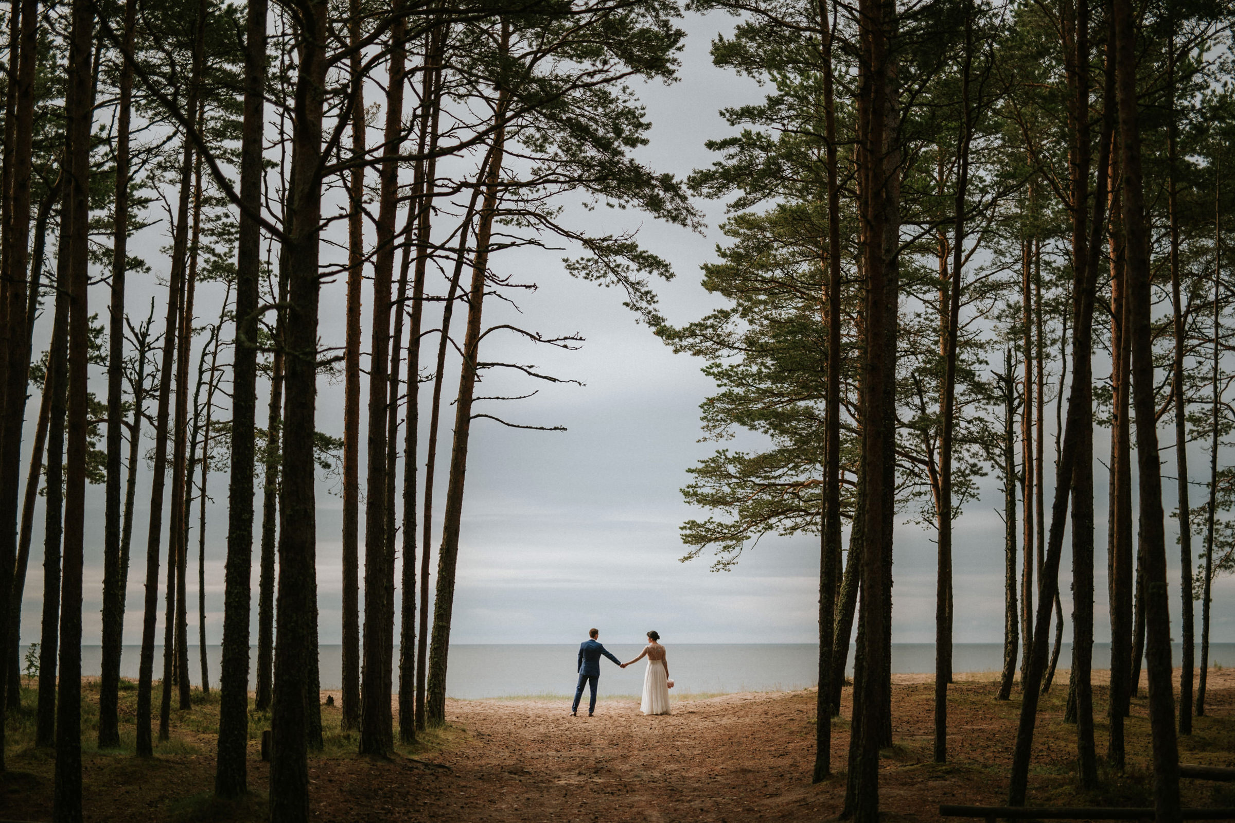 Couple holding hands framed by tall trees in Estonia - photo by M&J Studios