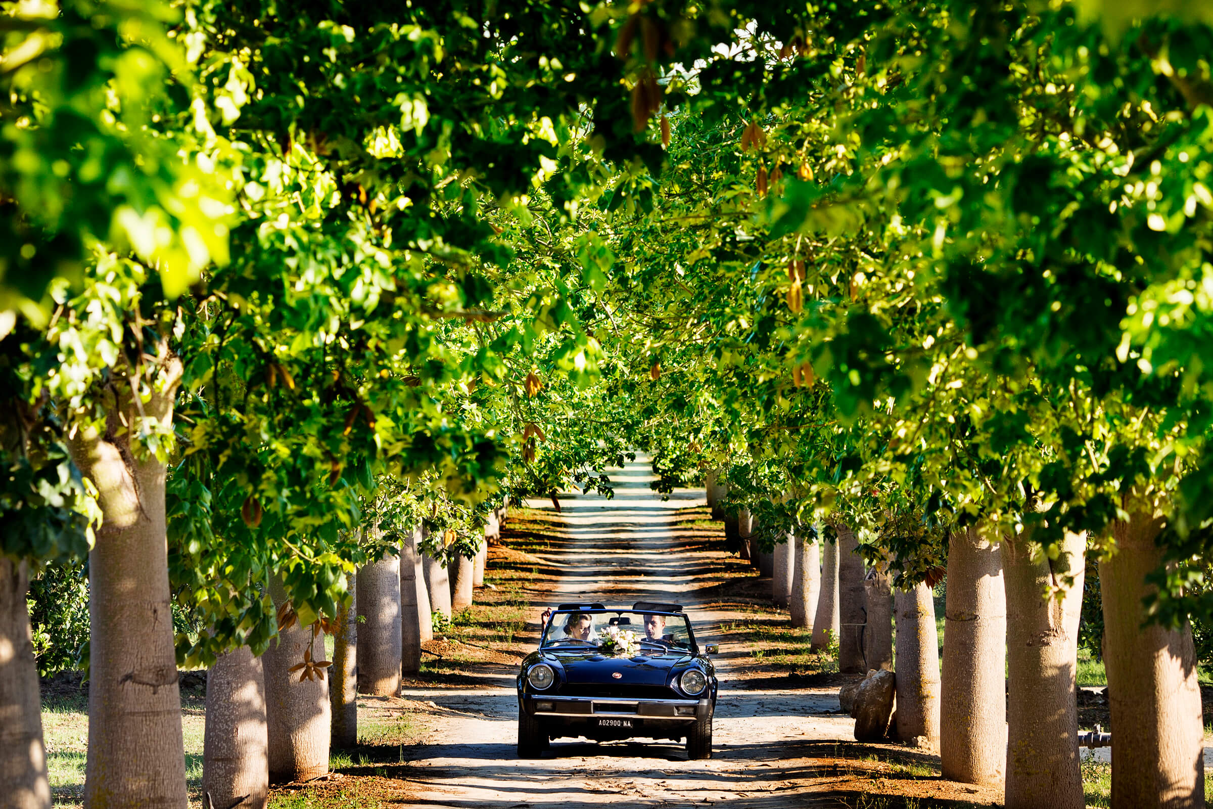 Couple auto exit under arches of trees in Italy - photo by Nino Lombardo Photographer