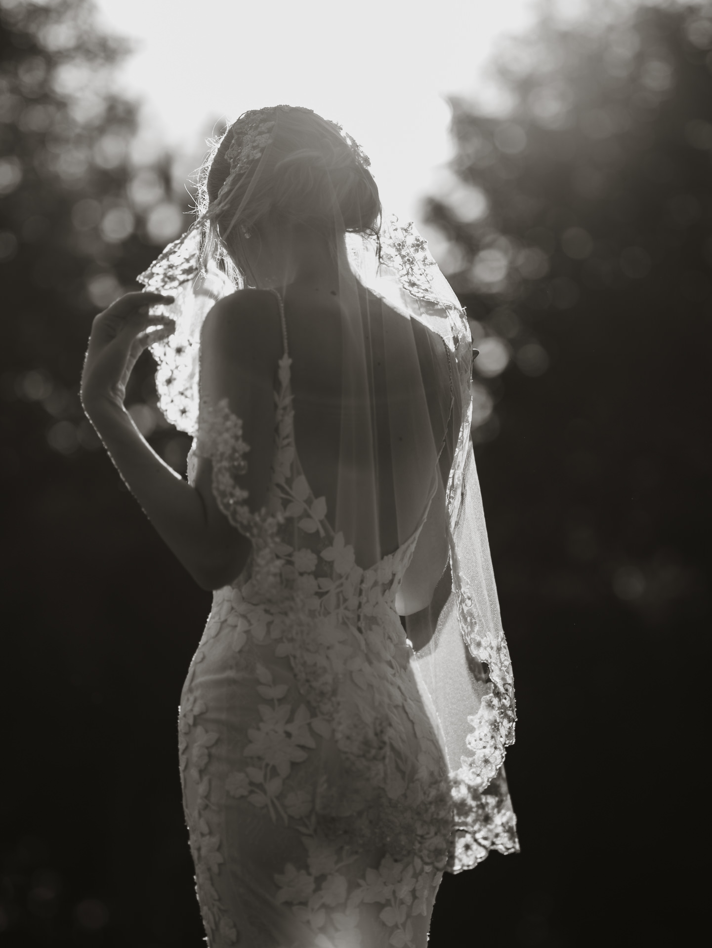 Backlit back view of bride in backless appliquéd gown - photo by Joel and Justyna