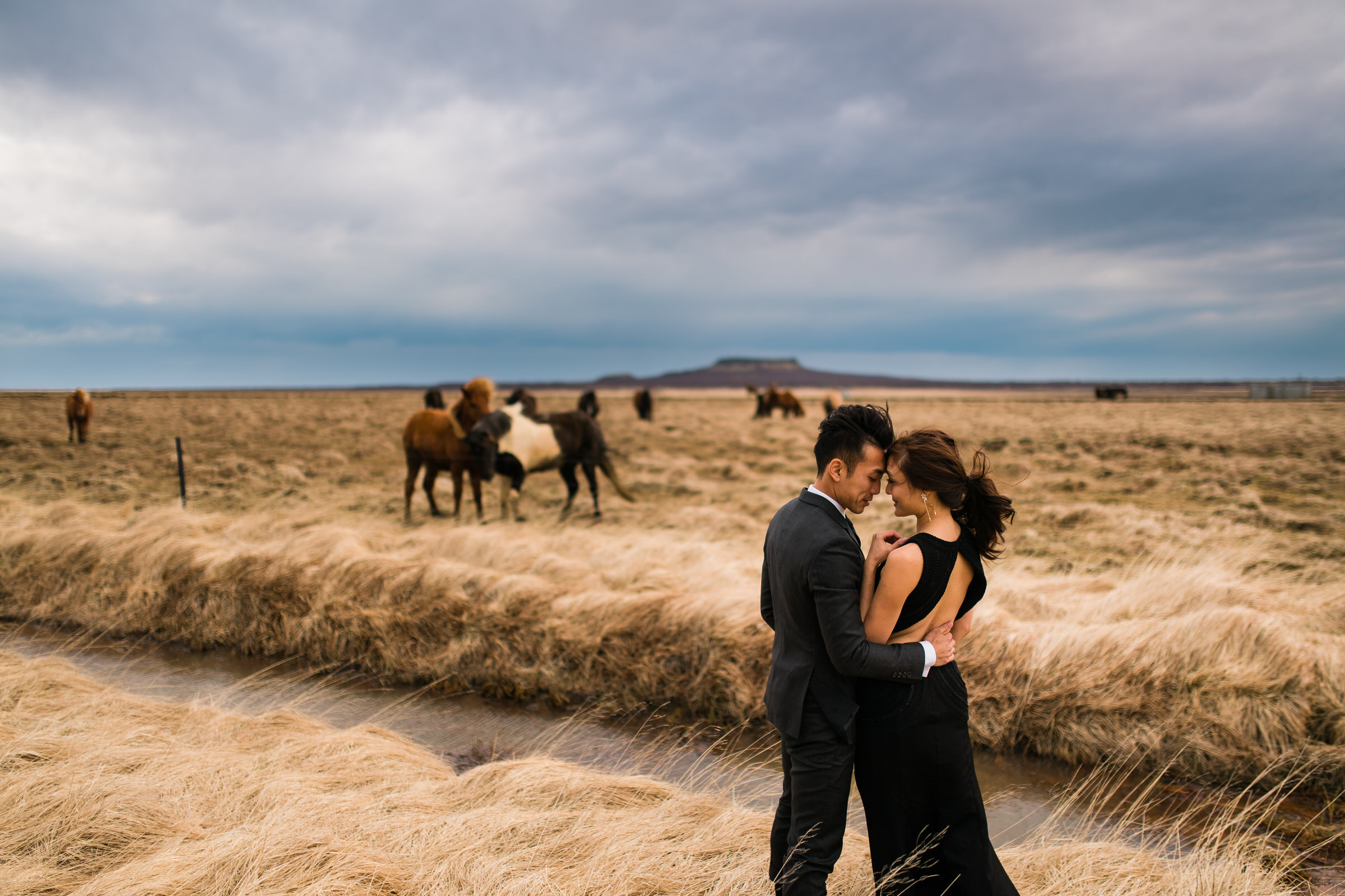 Elopement couple in Iceland landscape with horses - photo by M&J Studios