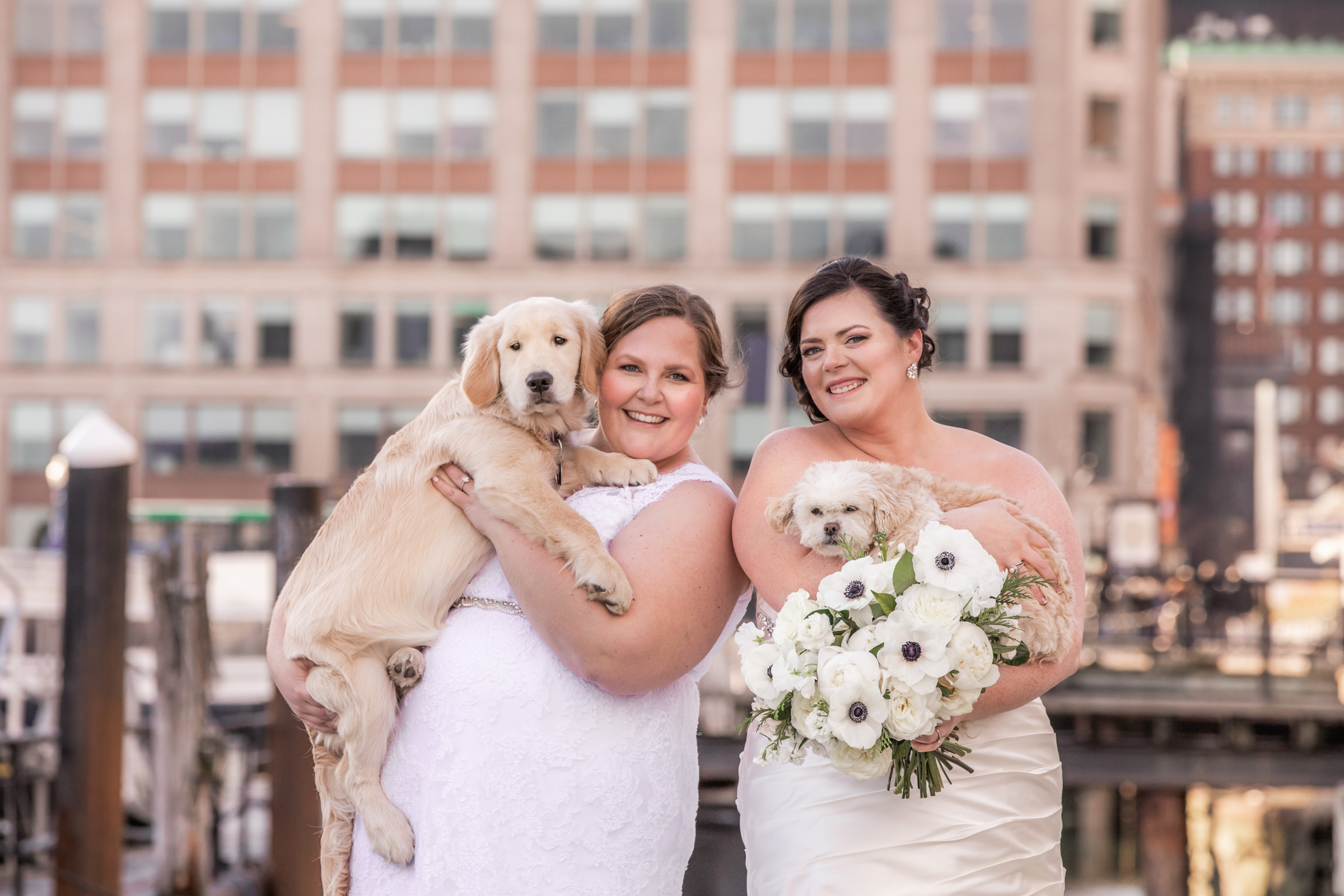 Bride couple holding their dogs - photo by Katie Kaizer Photography