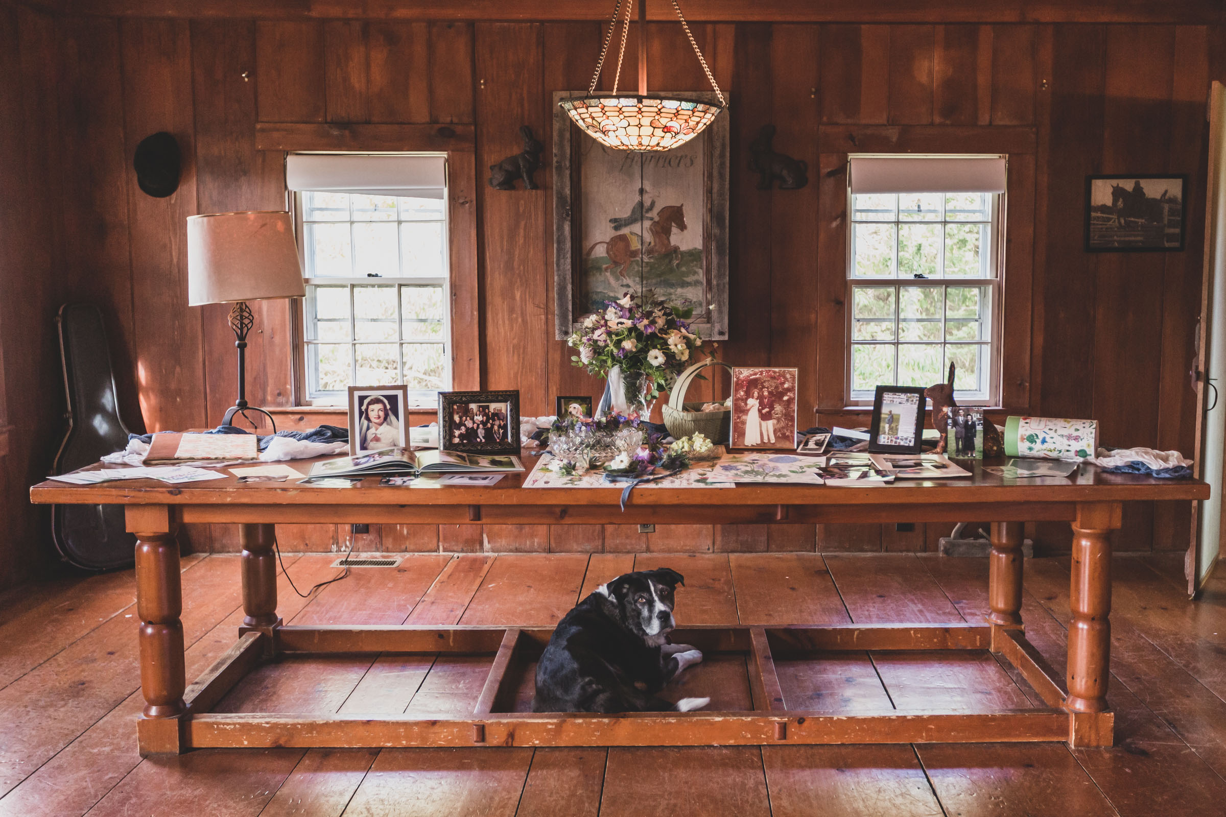 Dog under table of photo memorabilia - photo by Katie Kaizer Photography