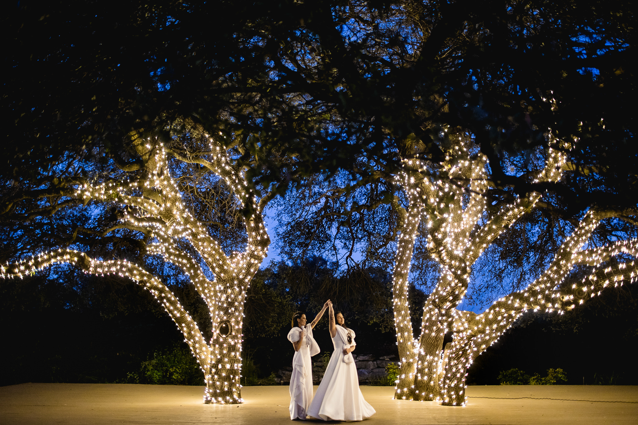 Brides against light wrapped trees in evening light - photo by John Winters Photography