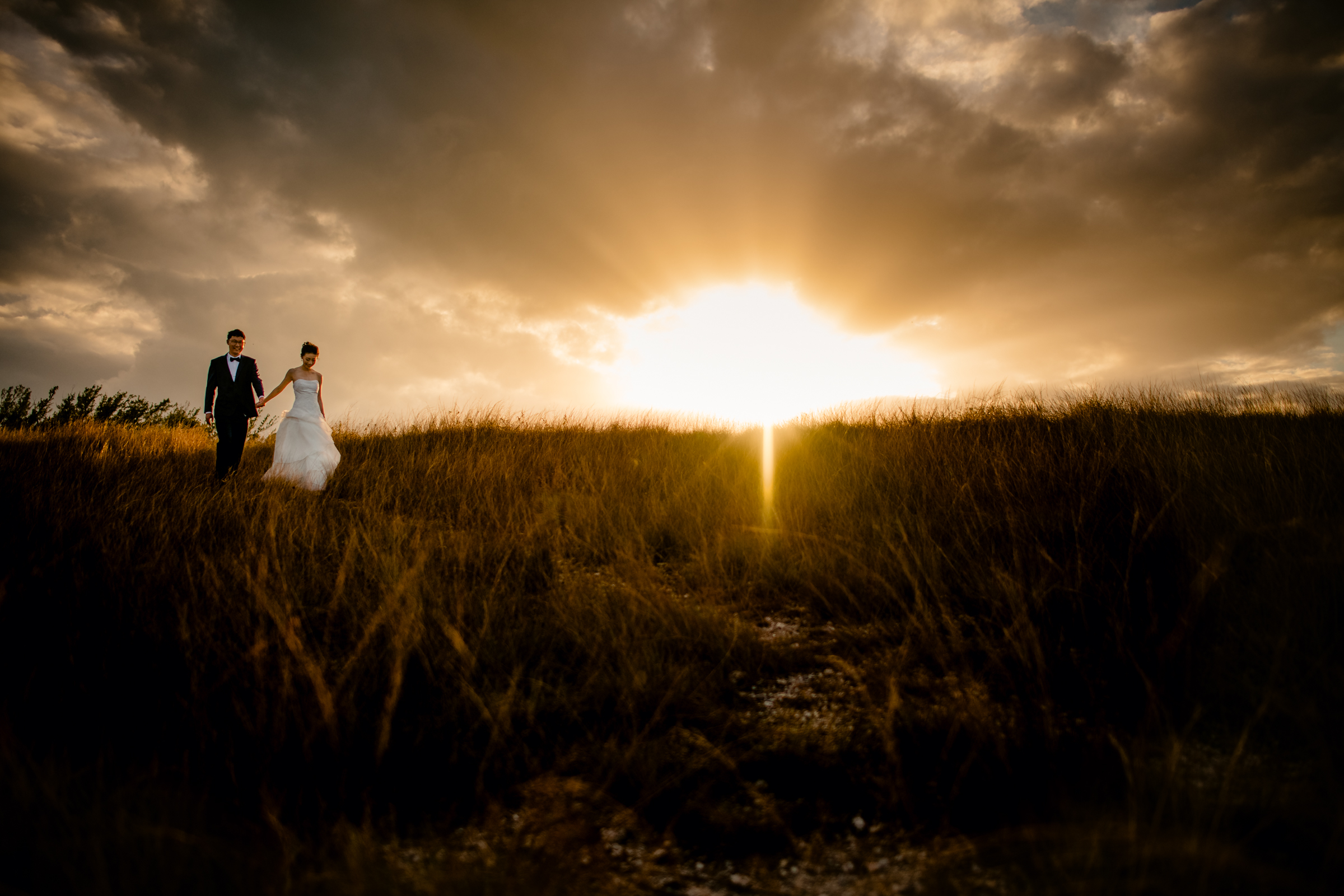 Couple in field against bright sky - photo by Michael Freas Photography