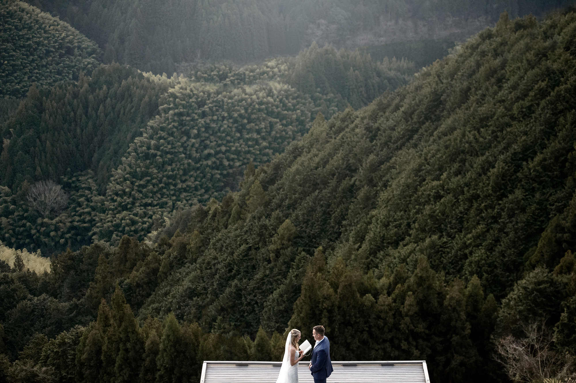couple against dramatic forested mountains - photo by 37 Frames