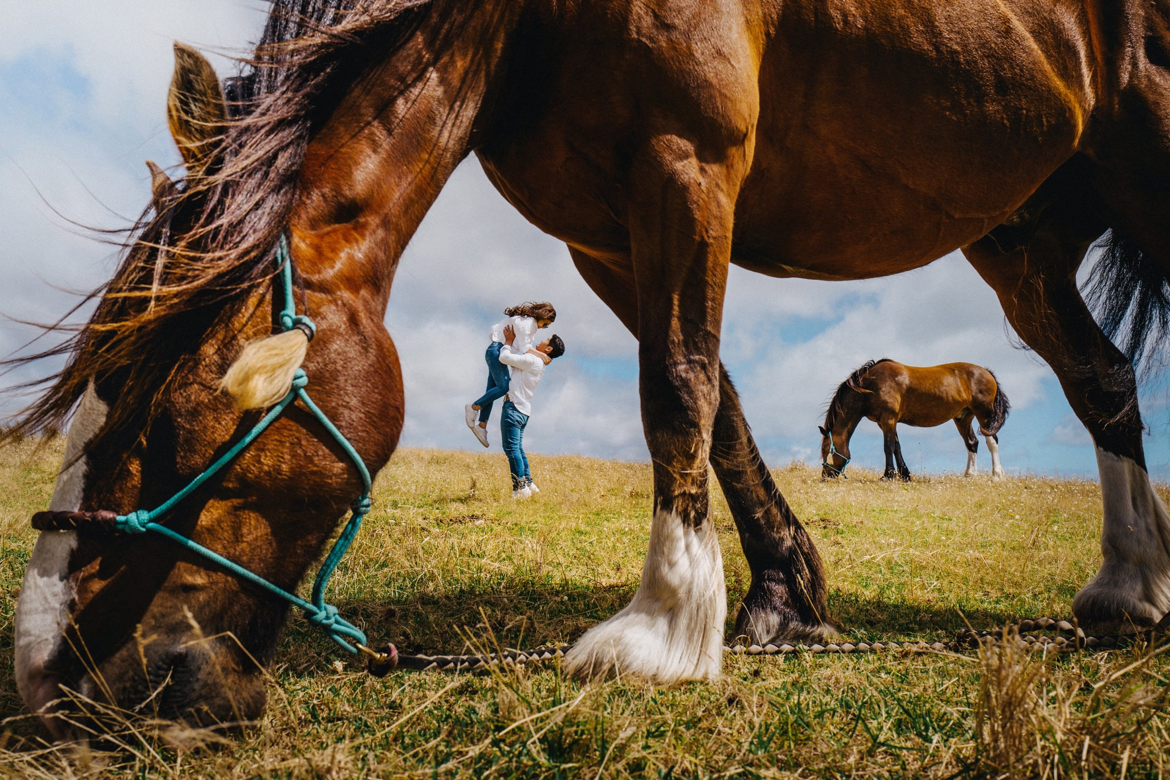 Couple in field with horses - photo by Feztography