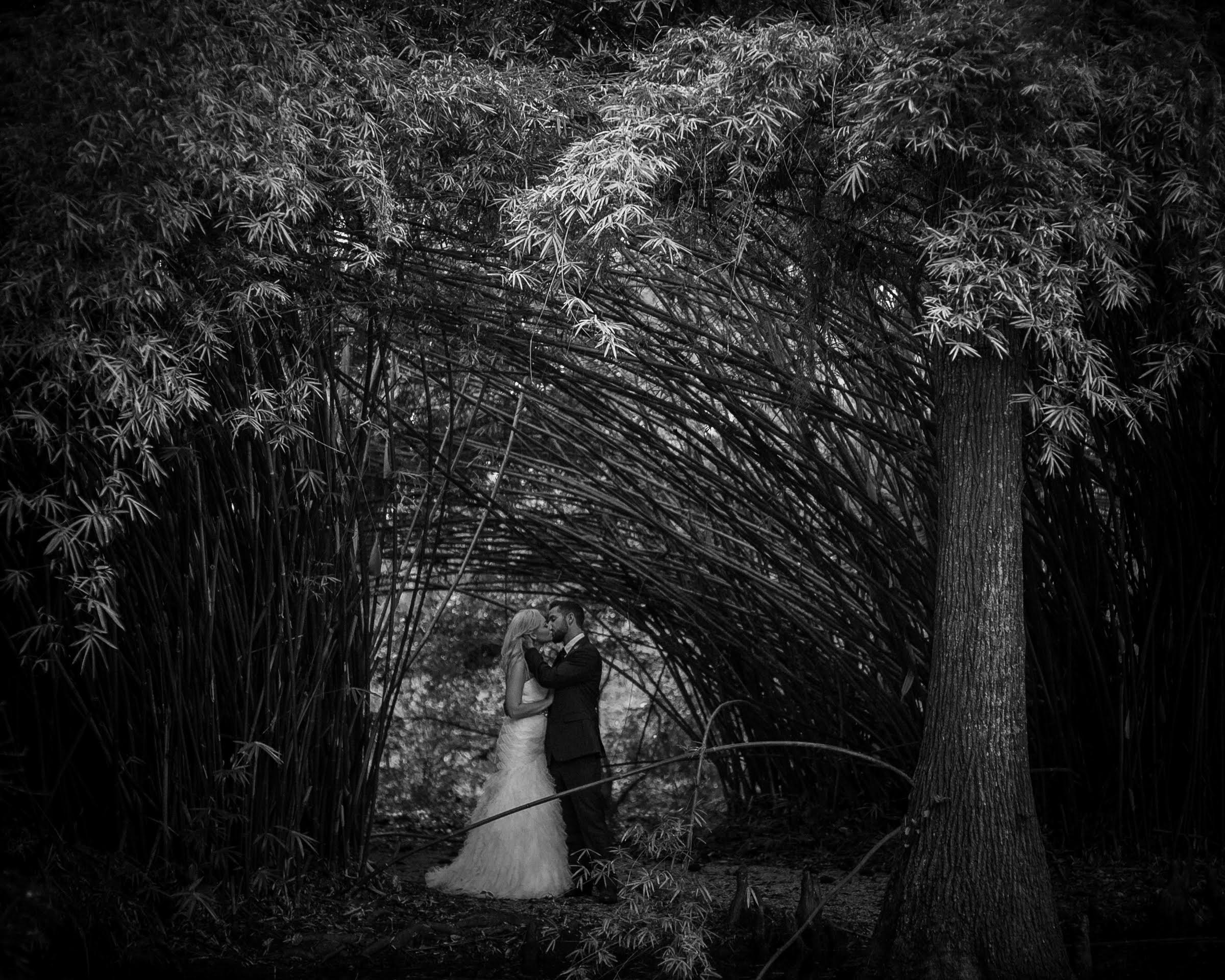 Couple -in-dimly-lit-forest - photo by Richard Israel Photography
