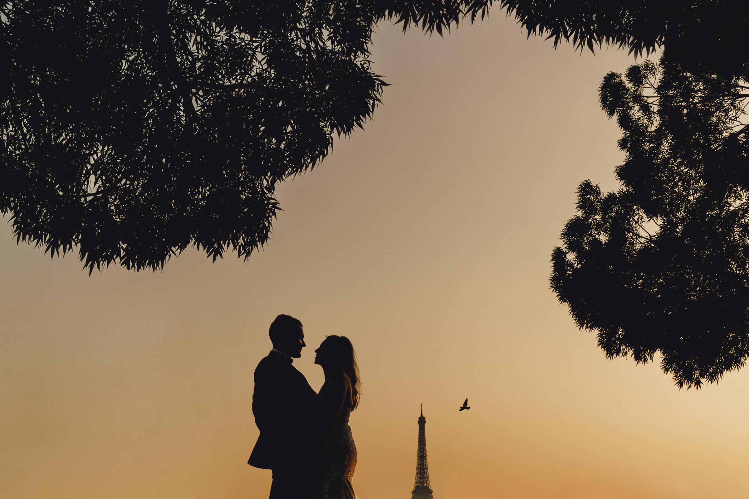 Silhouette of couple framed by tree with steeple in background - photo by MIKI Studios