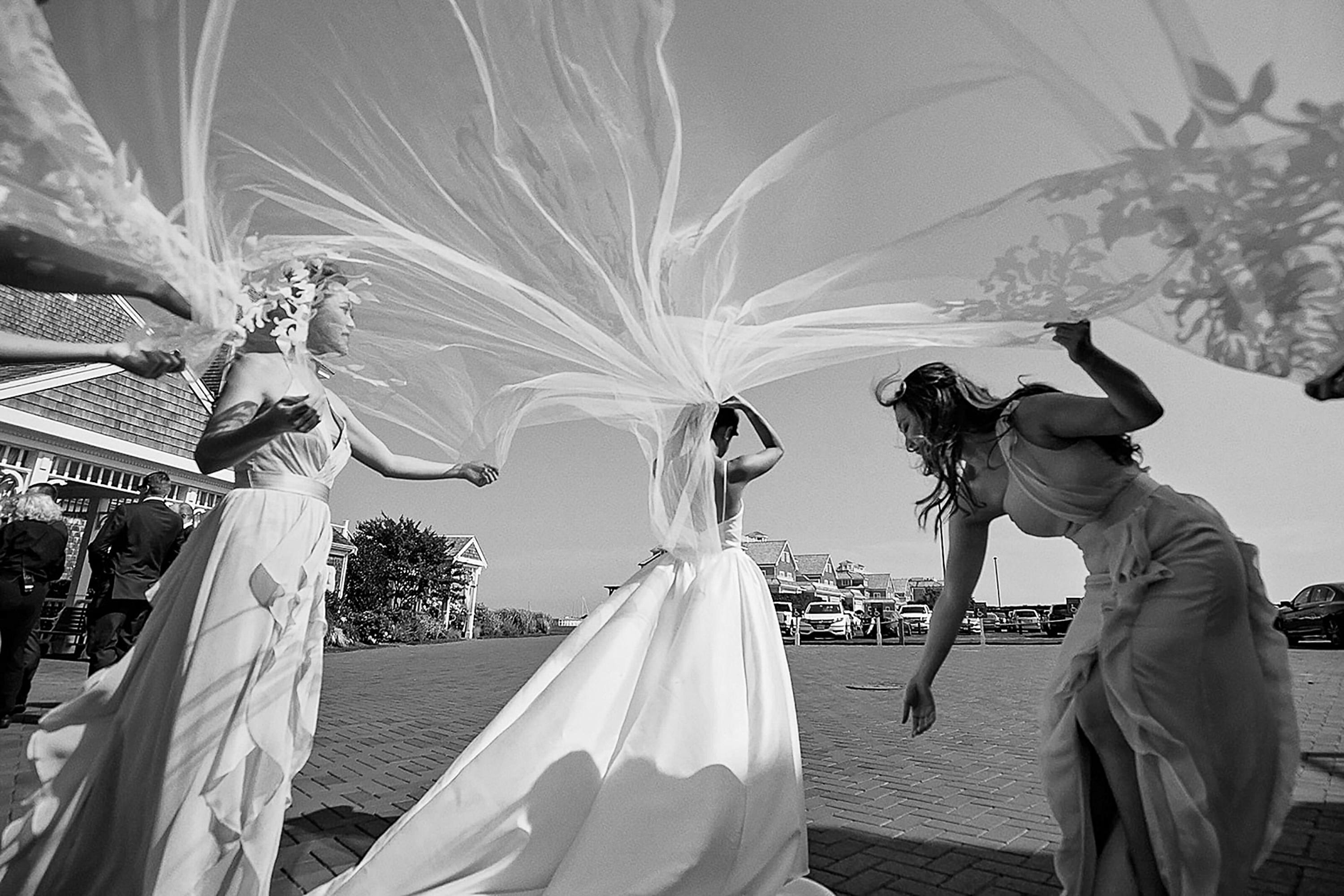 Bride with veil in the wind- photo by Alex Paul Photography