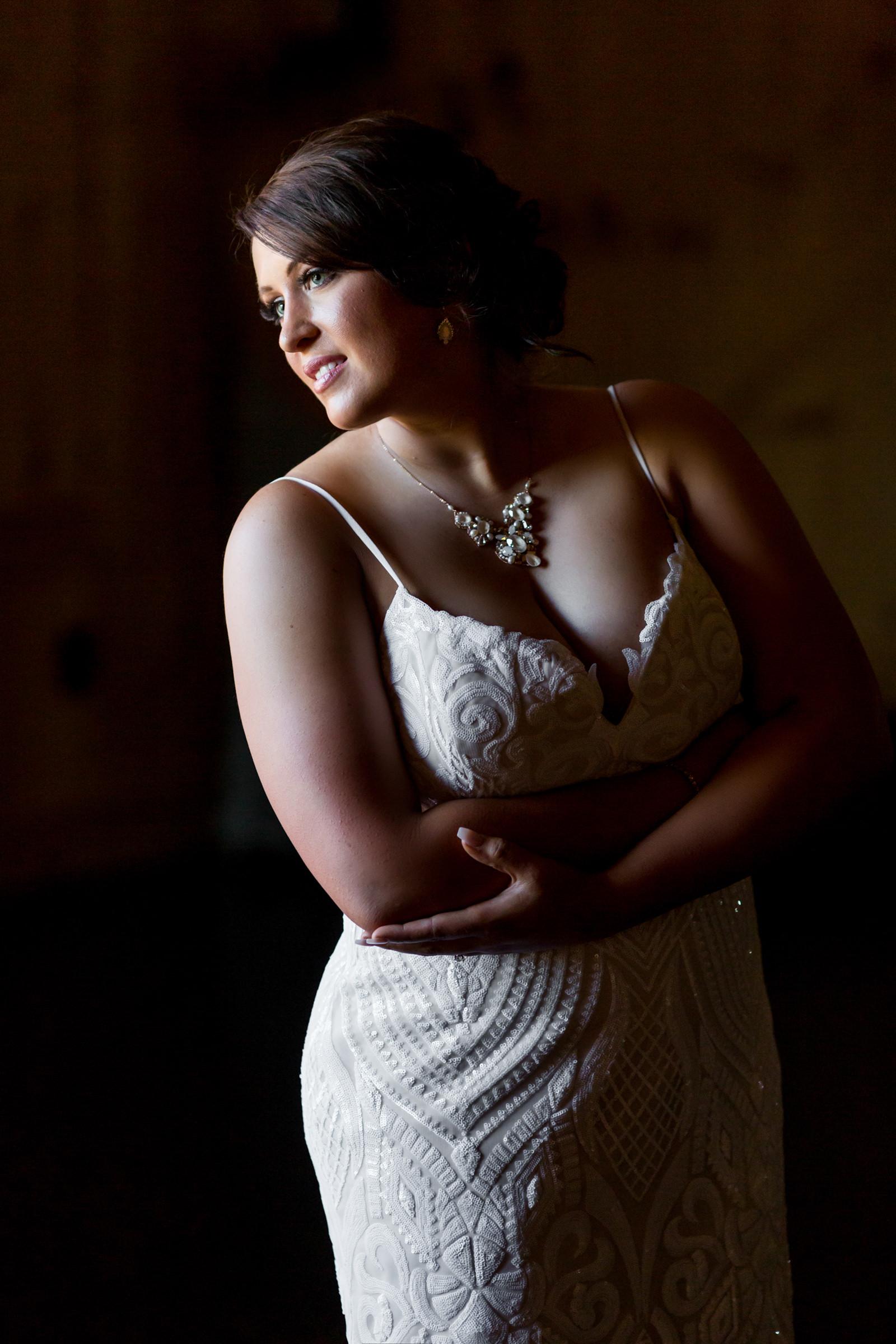Bride portrait in dramatic light - photo by Procopio Photography
