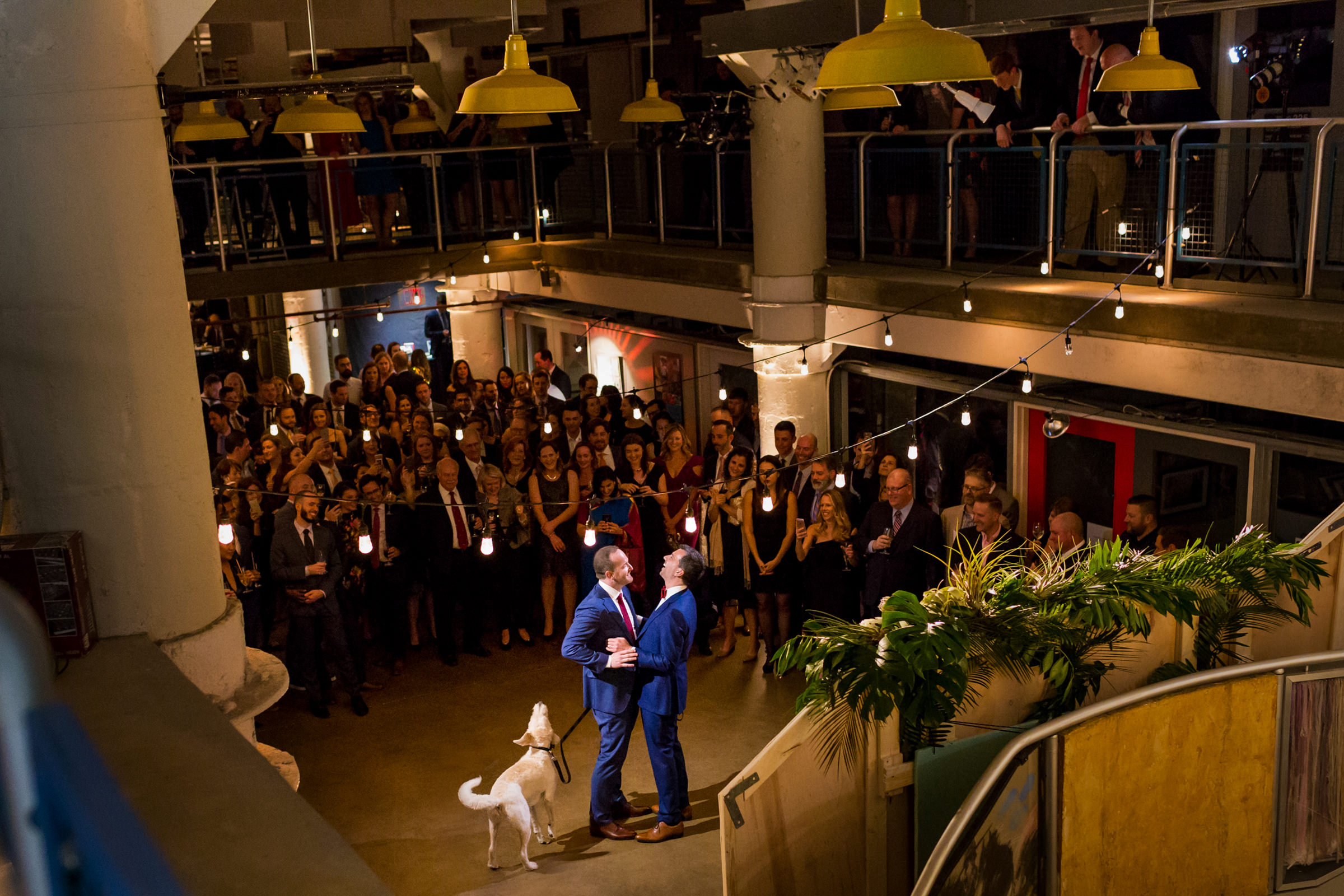 Grooms with dog and their guests - photo by Procopio Photography