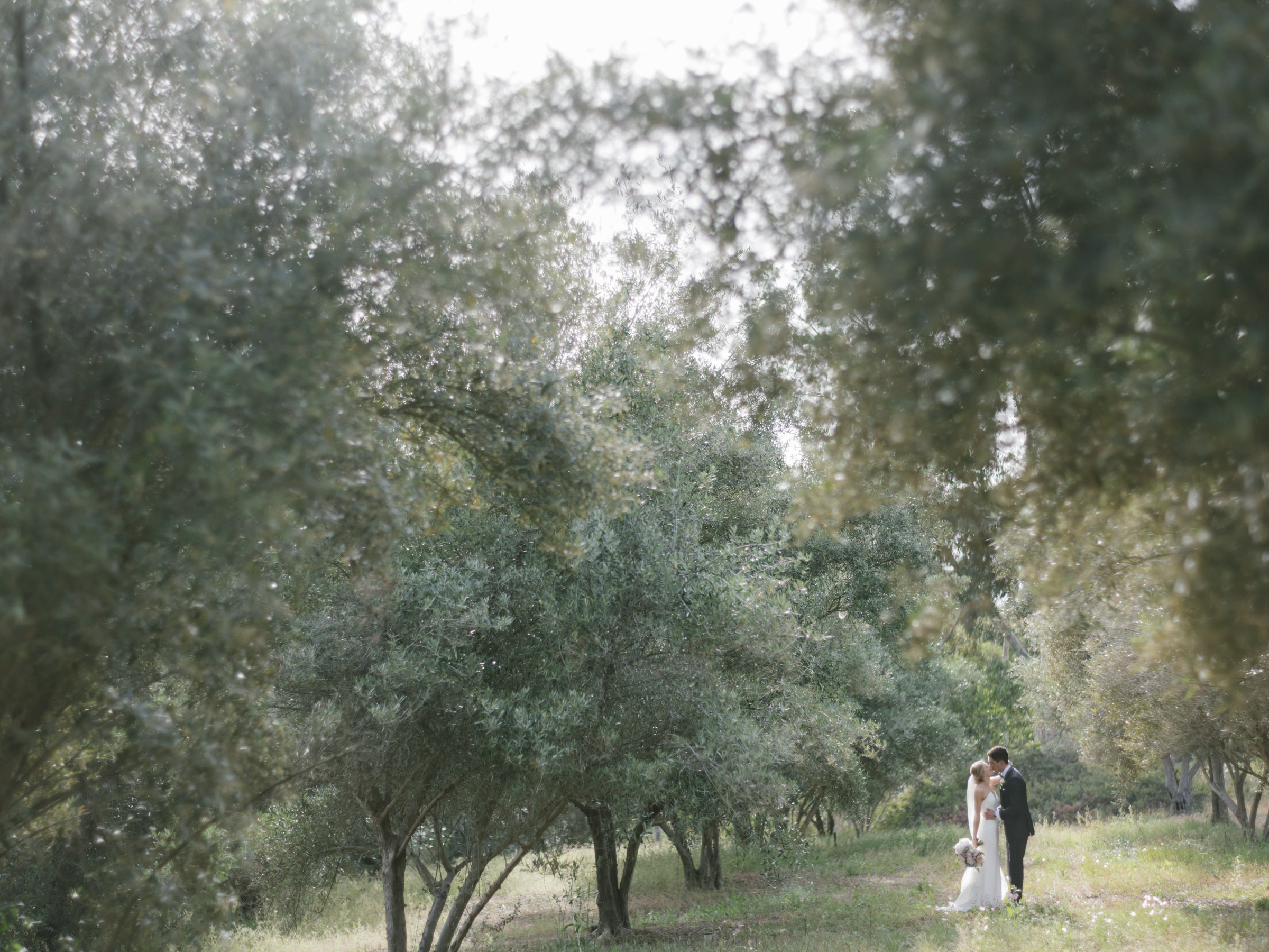 Landscape shot of couple amidst trees - photo by Amy and Stuart Photography