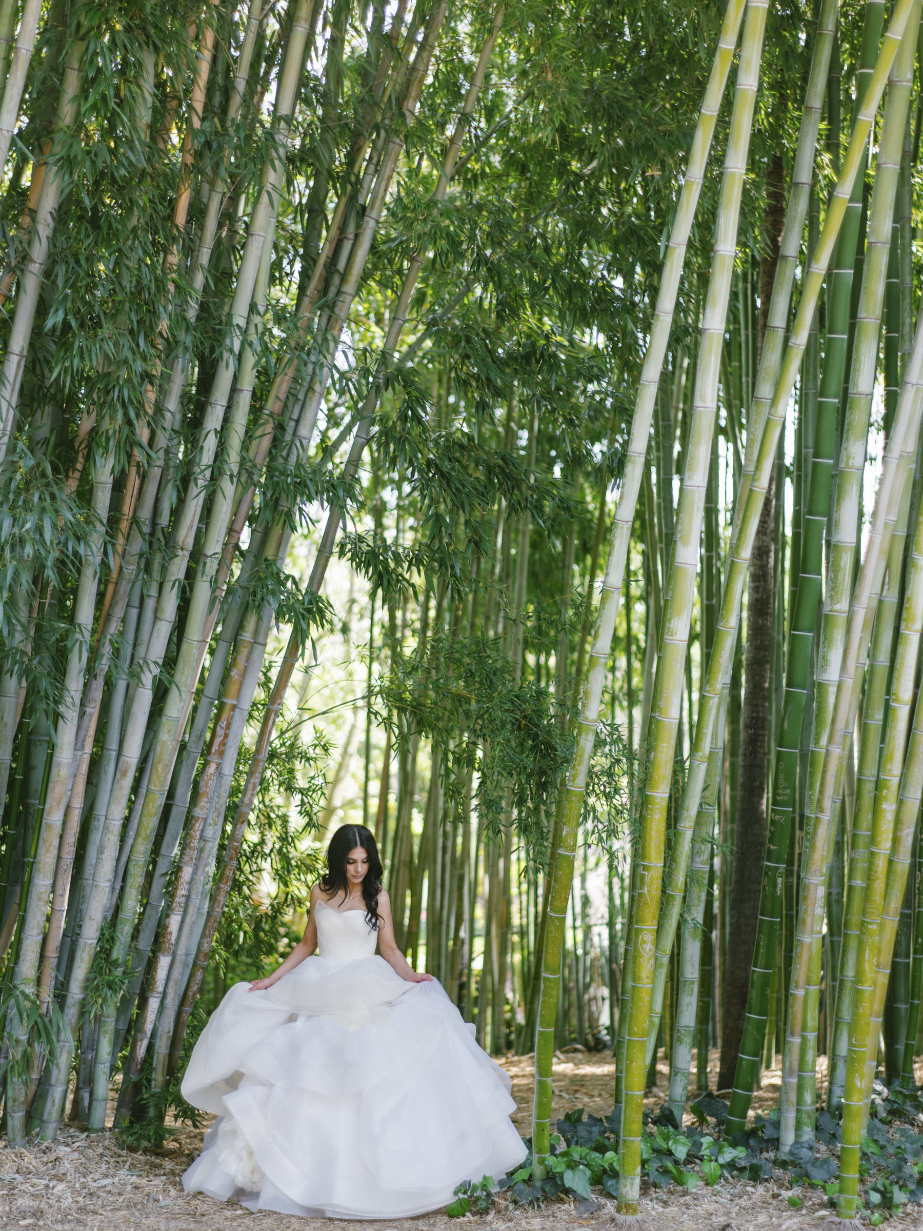 Luxury bride portrait against bamboo grove - photo by Amy and Stuart Photography
