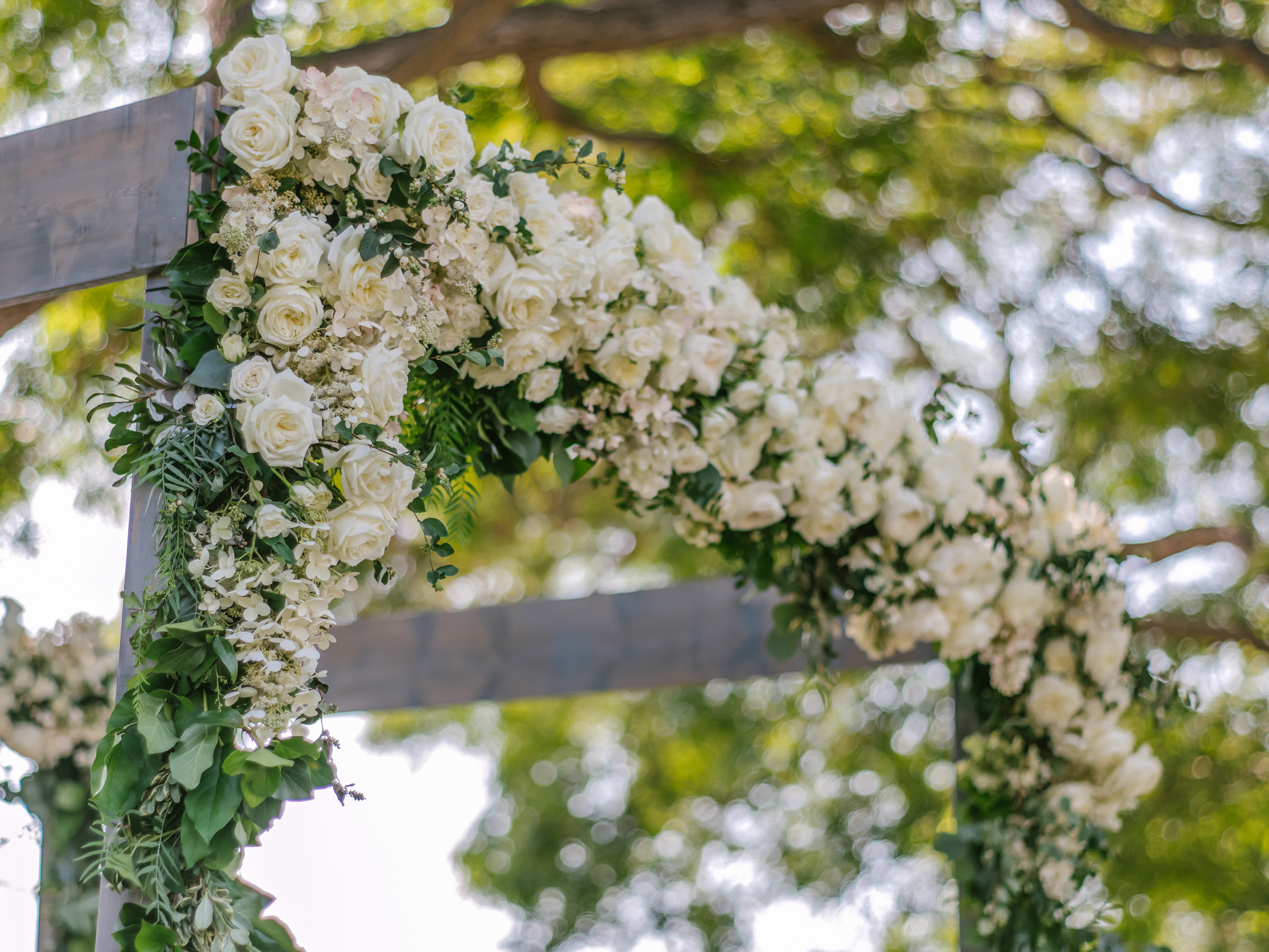 white roses decorate outdoor arbor- photo by Amy and Stuart Photography