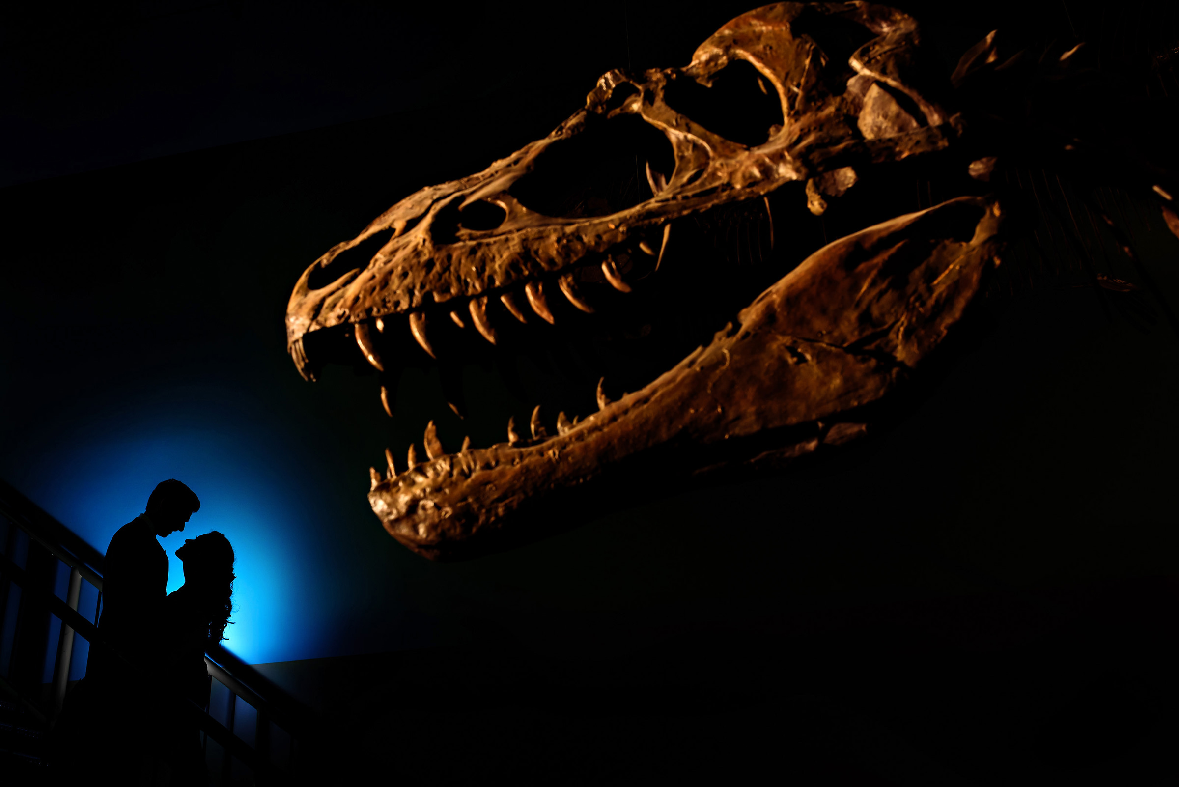 Silhouette of couple near the skeletal jaws of T-Rex- photo by Moore Photography