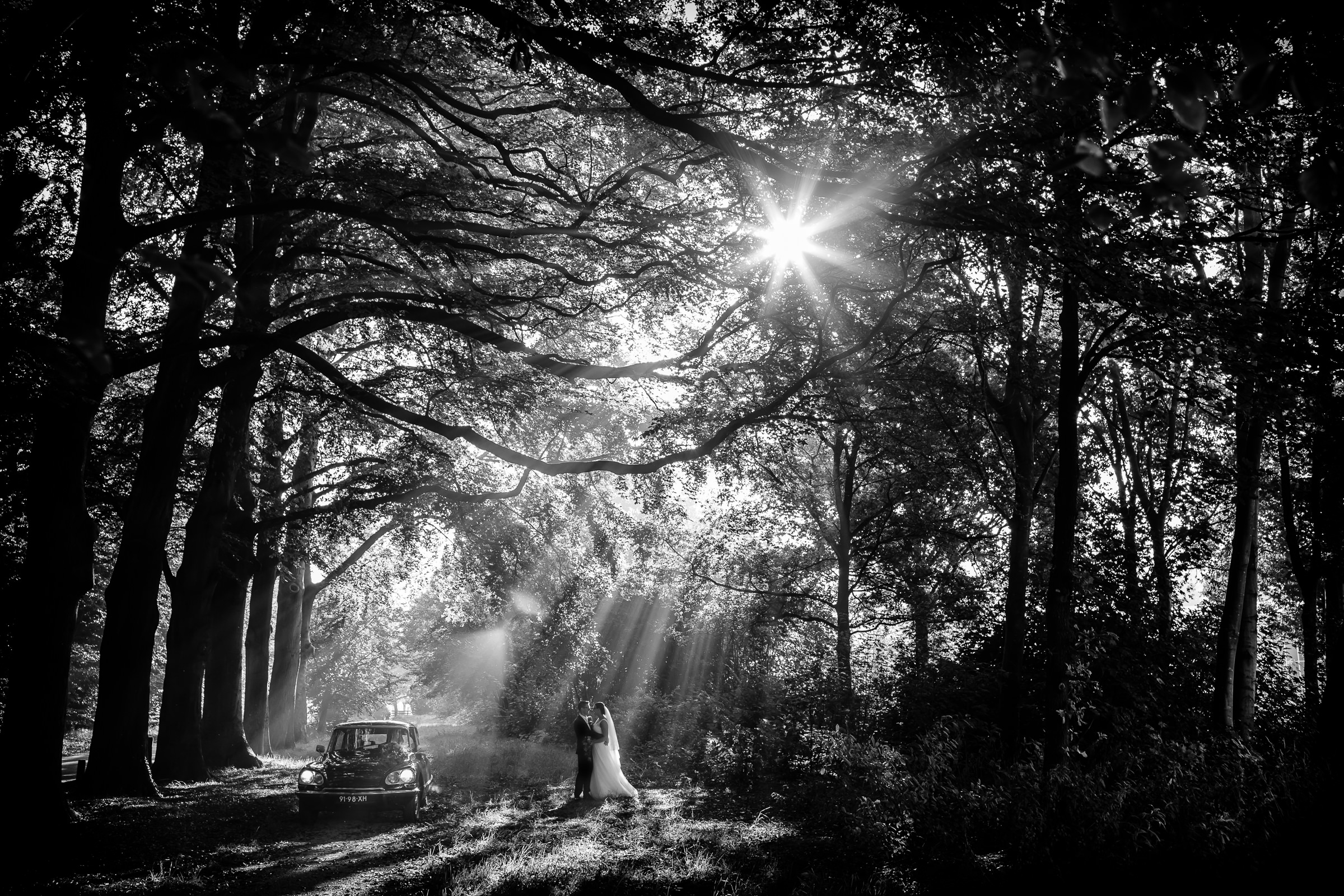 Couple under sun rays in forest - photo by Peter van der Lingen Wedding Photography