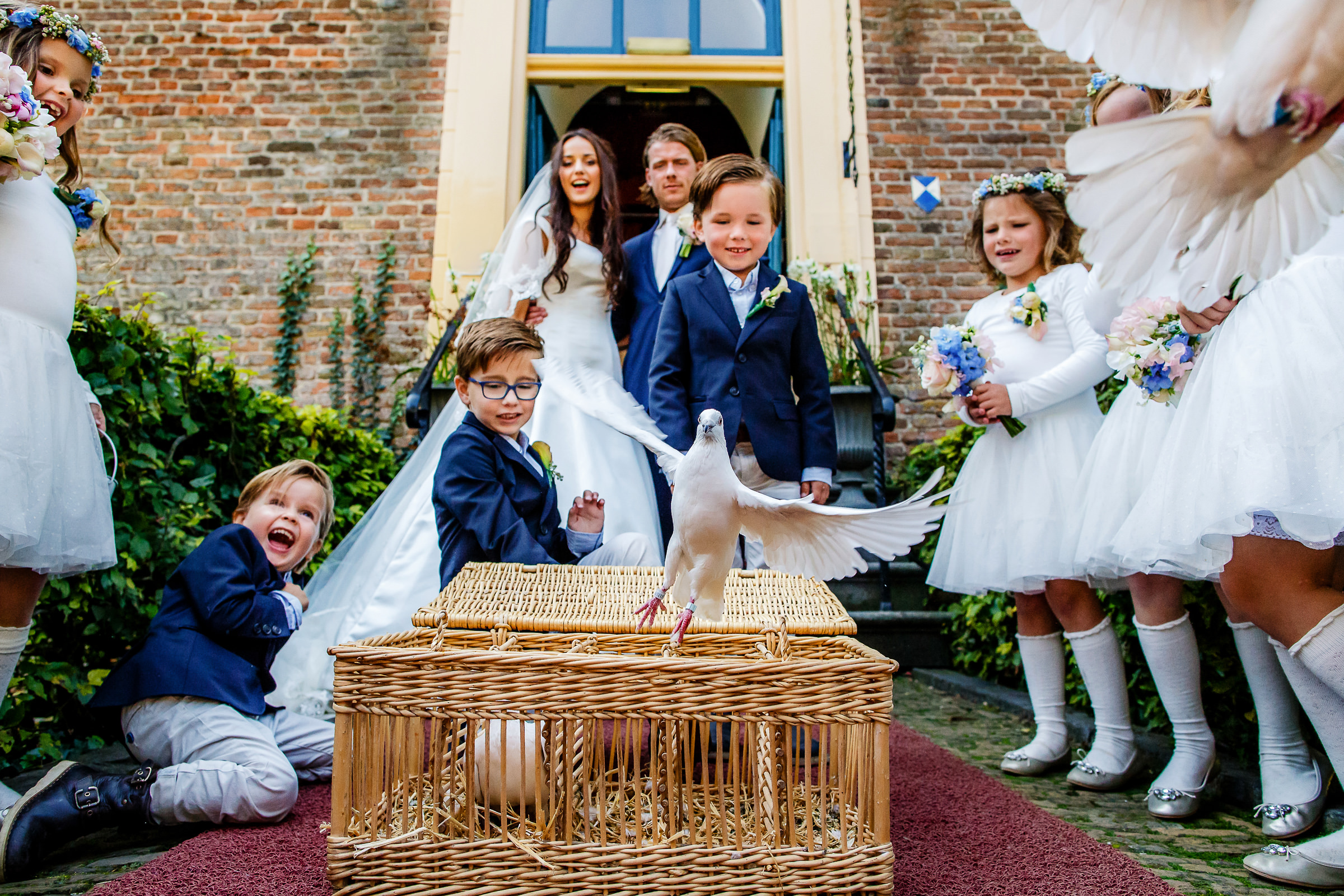 Doves fly out of wicker basket amidst flower girls and couple - photo by Peter van der Lingen Wedding Photography