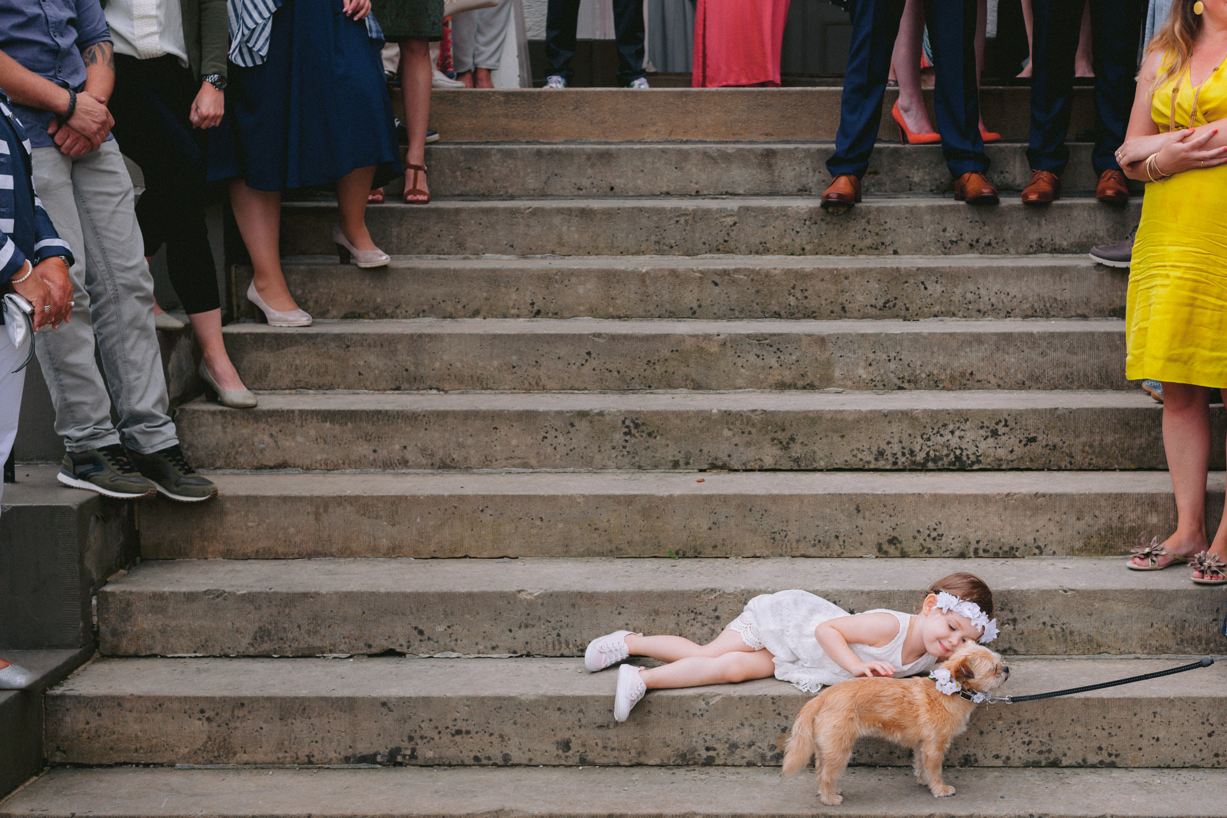 little girl pets little dogs on steps lined with guests - photo by Peter van der Lingen Wedding Photography