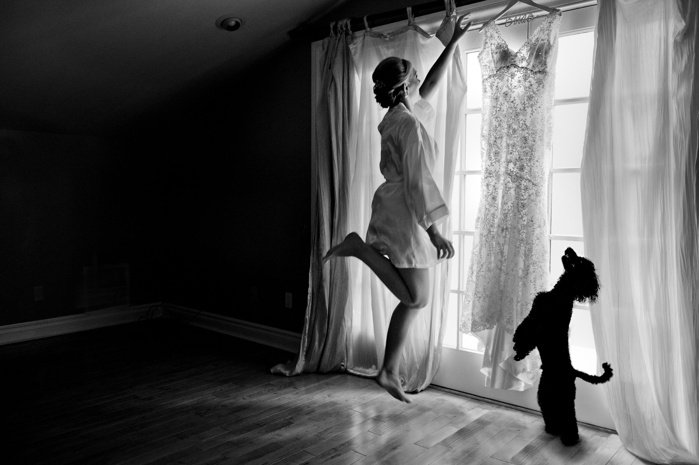 Bride and dog jumping up to reach hanging gown - photo by Matthew Sowa Photography