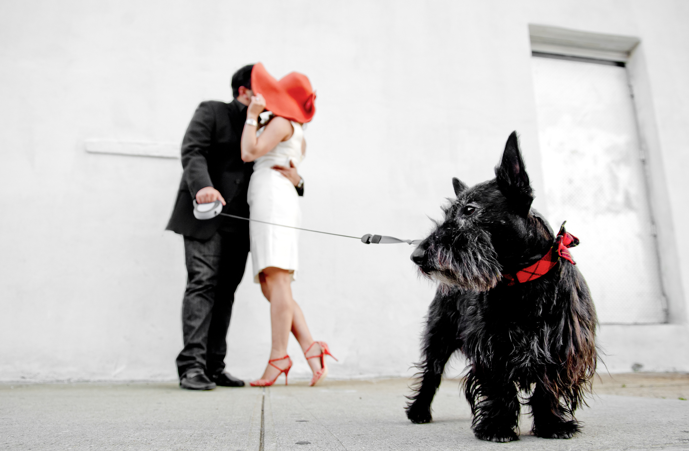 Engagement couple photo with cute dog - photo by Matthew Sowa Photography