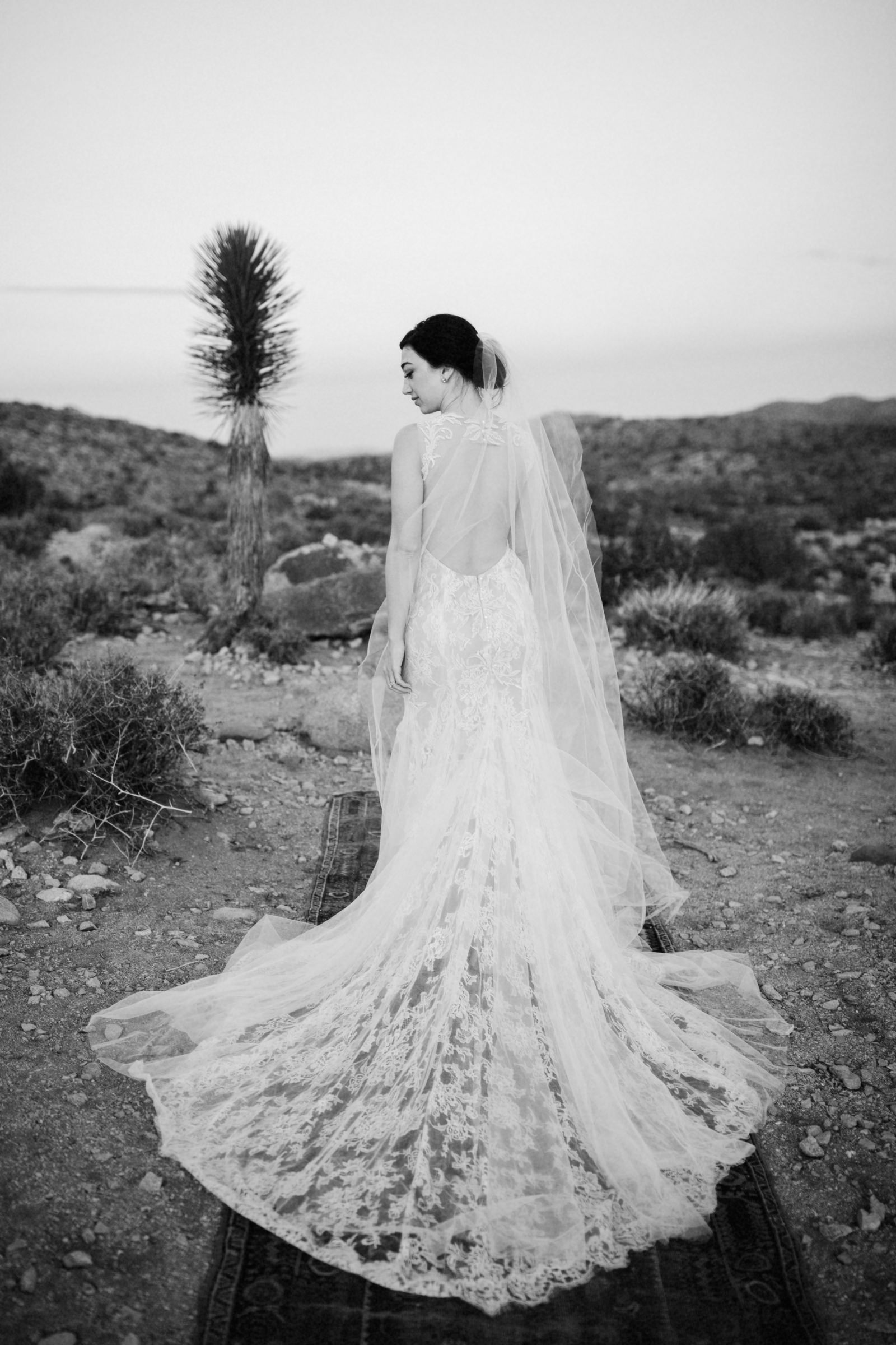 Back view of bridal gown - photo by Jonas Seaman Photography