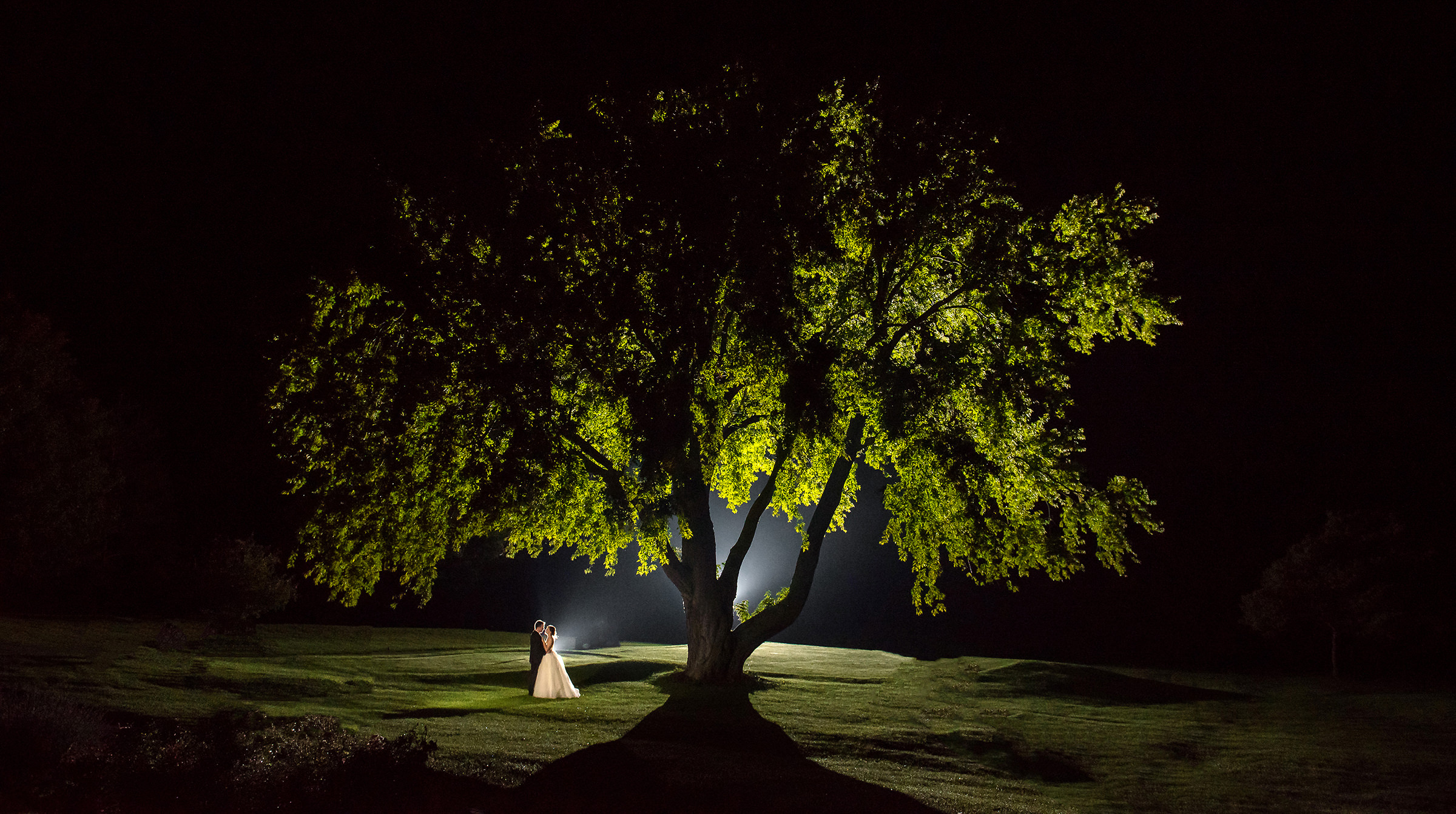 Classic couple portrait at night under spreading tree by David & Sherry Photography