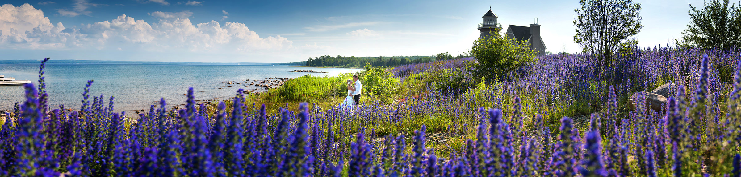 Cobble Beach Golf Resort couple panorama against fields of lavender - photo by David & Sherry Photography